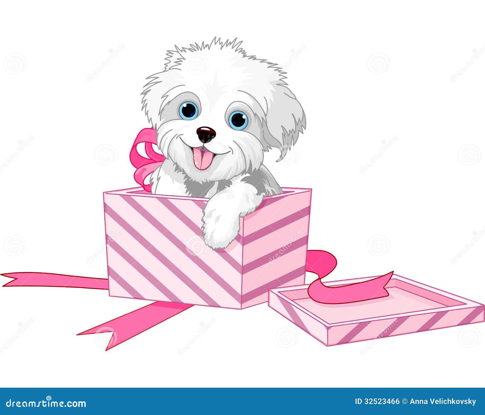 在箱子的狗