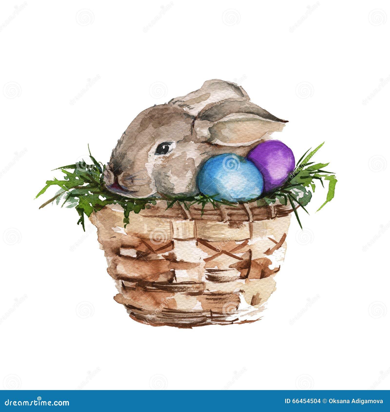 在篮子的复活节兔子 查出 水彩