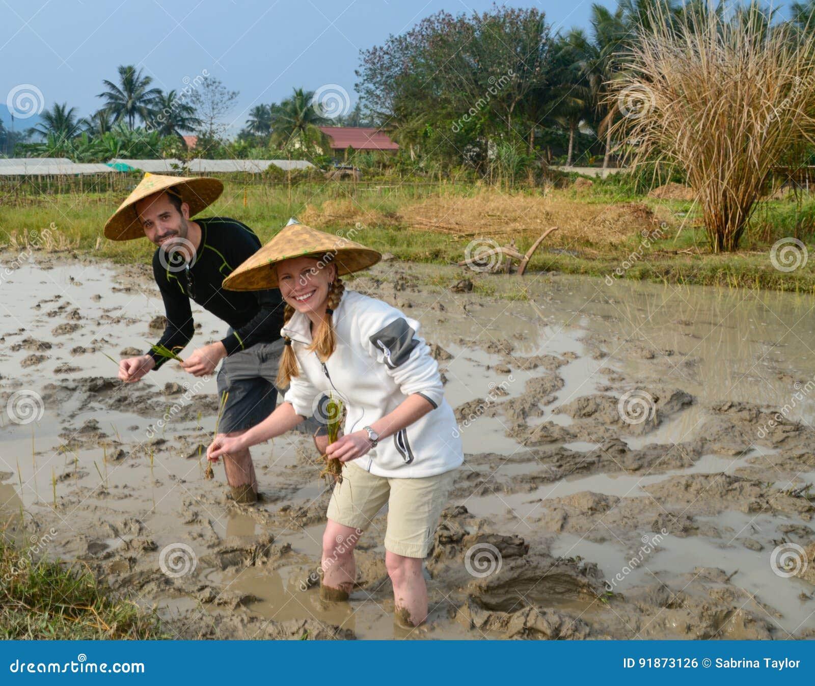 在米领域的夫妇在老挝