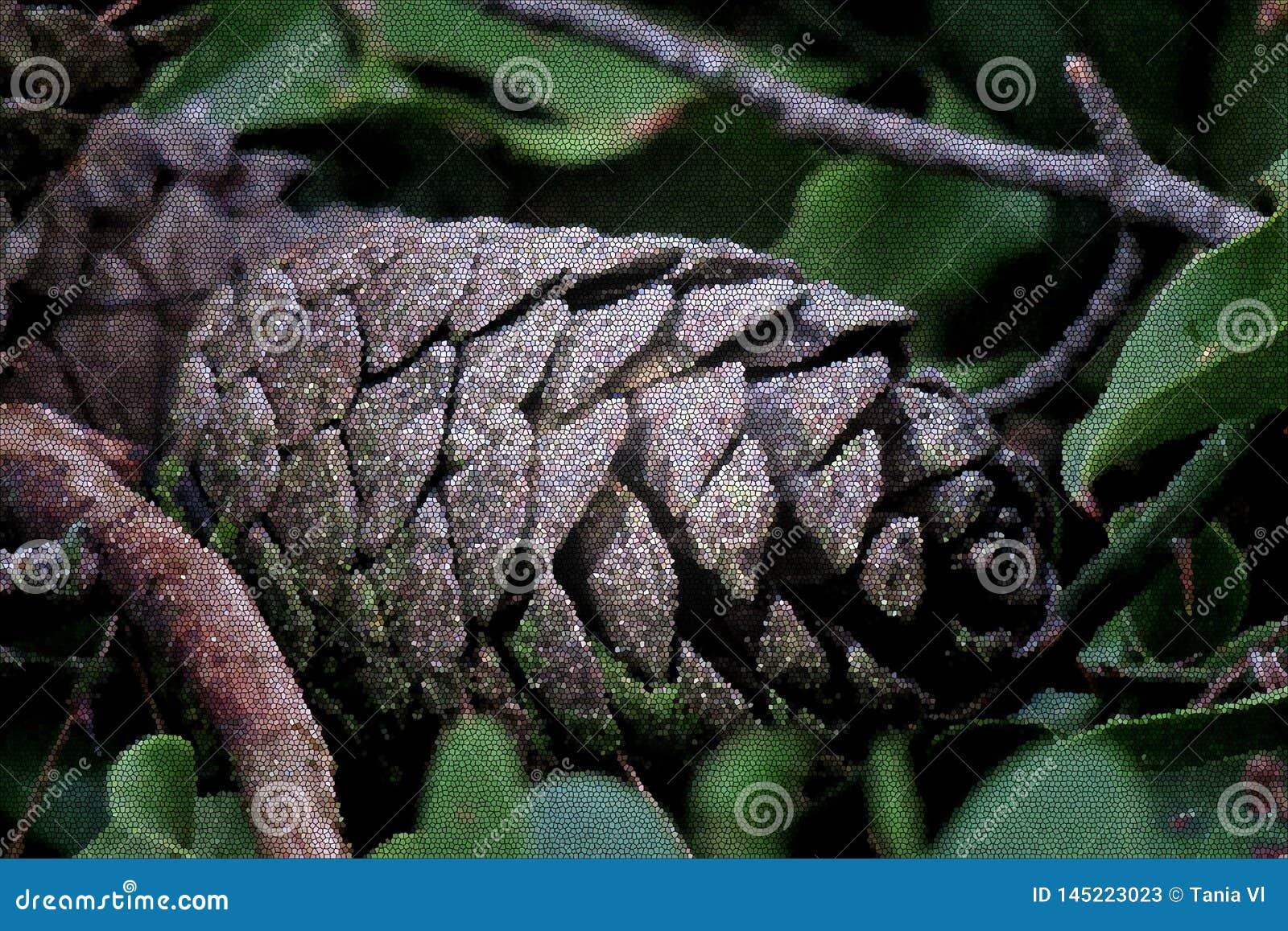 在紧密绿色叶子的美丽的杉木锥体
