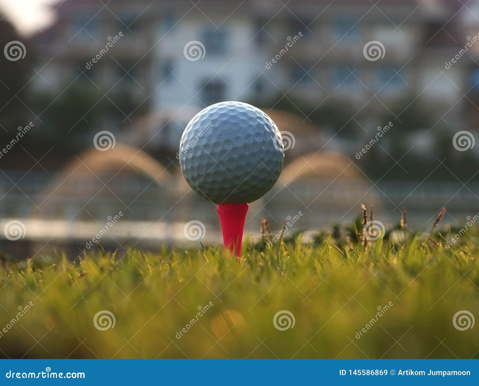 在红色发球区域的高尔夫球在绿色草坪