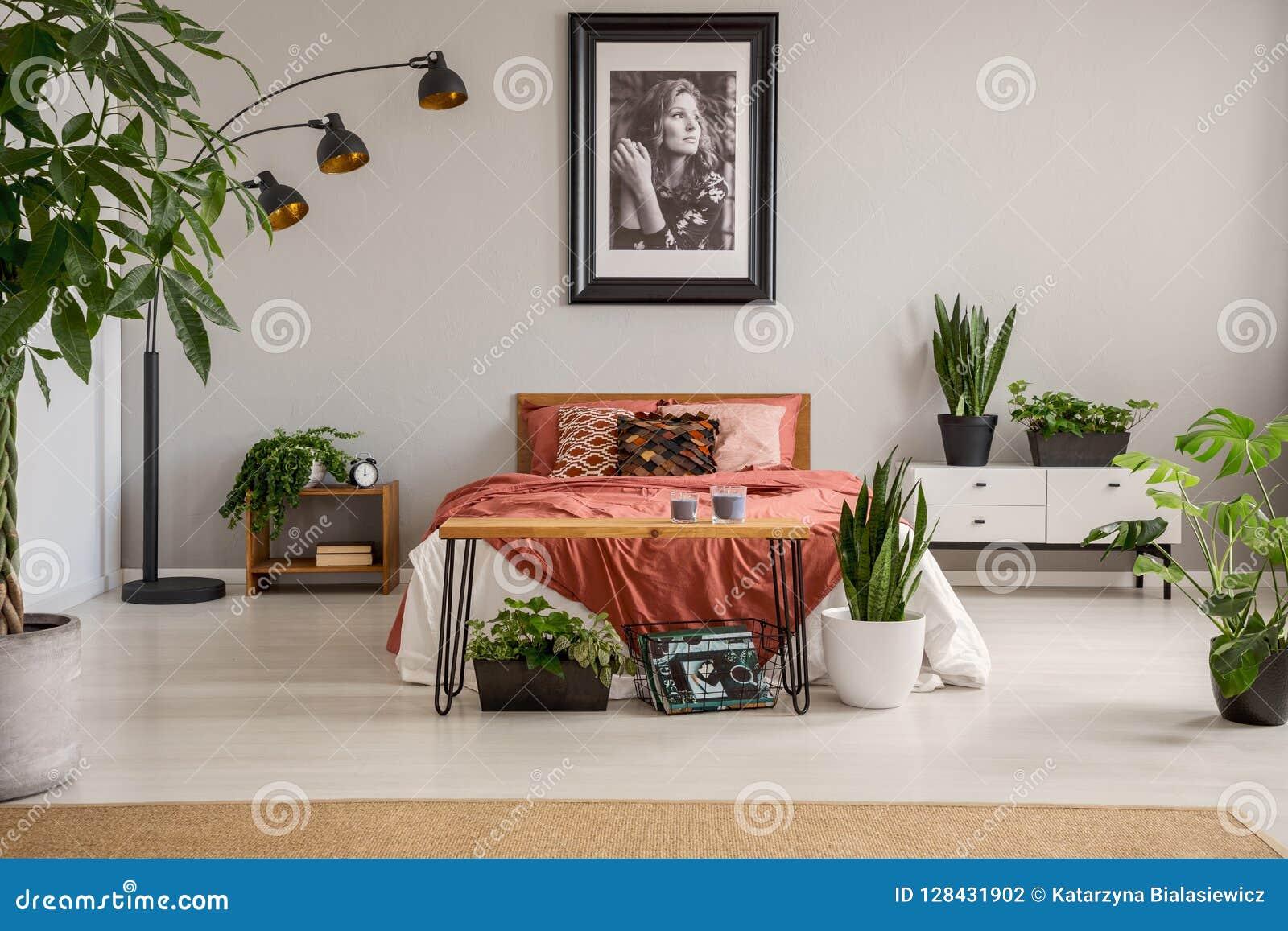 在红色床上的海报与在灰色卧室内部的毯子与植物和地毯