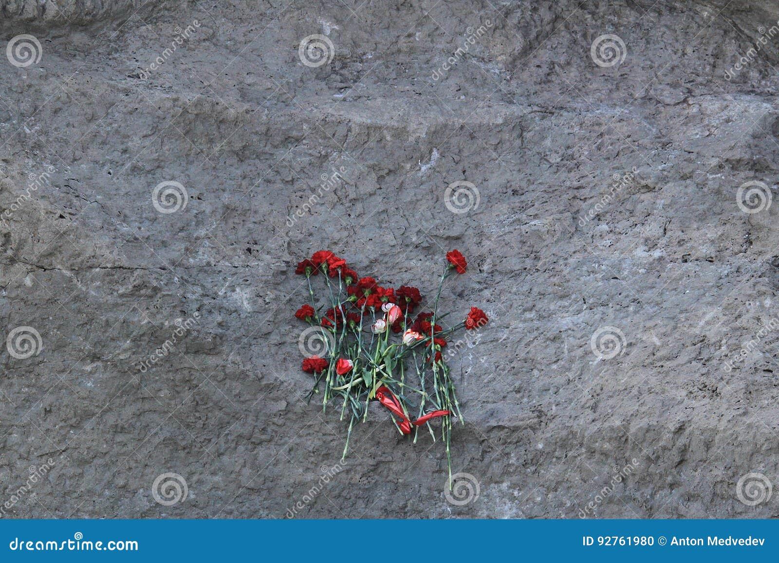 在纪念石头的花