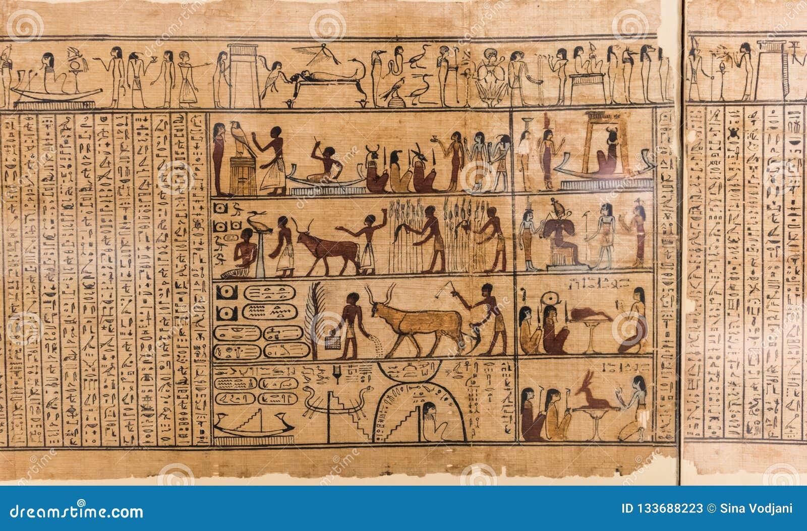 在纸莎草的埃及象形文字的字符的