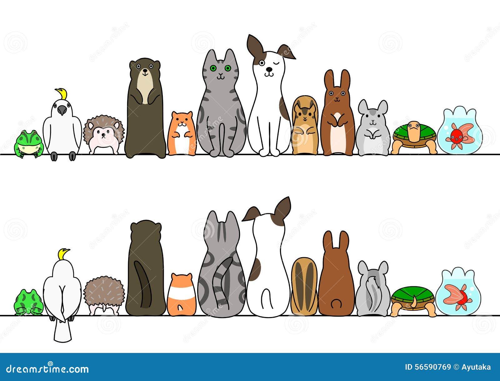 在线、前面和后面的宠物