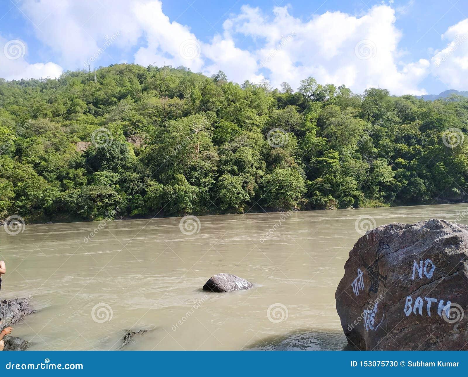 在绿色山前面的美丽的河