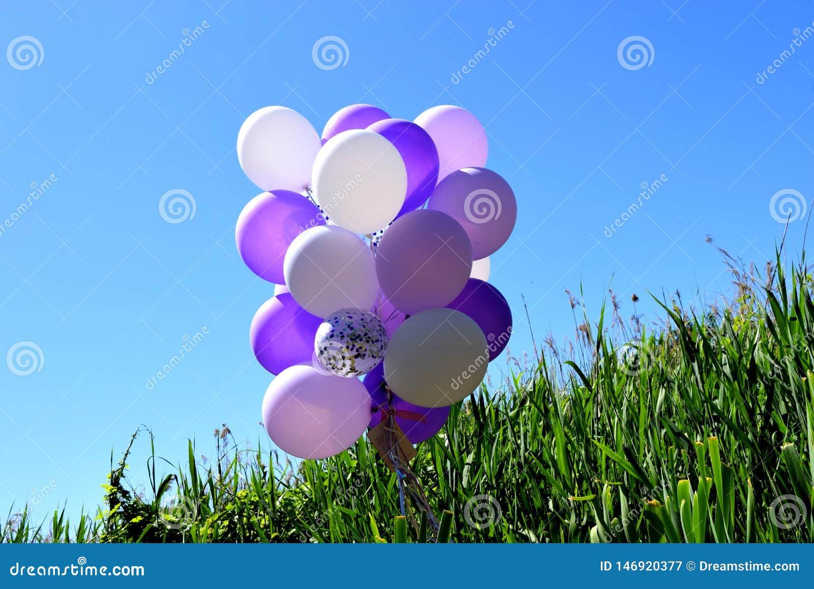 在绿草的多彩多姿的欢乐气球反对天空蔚蓝