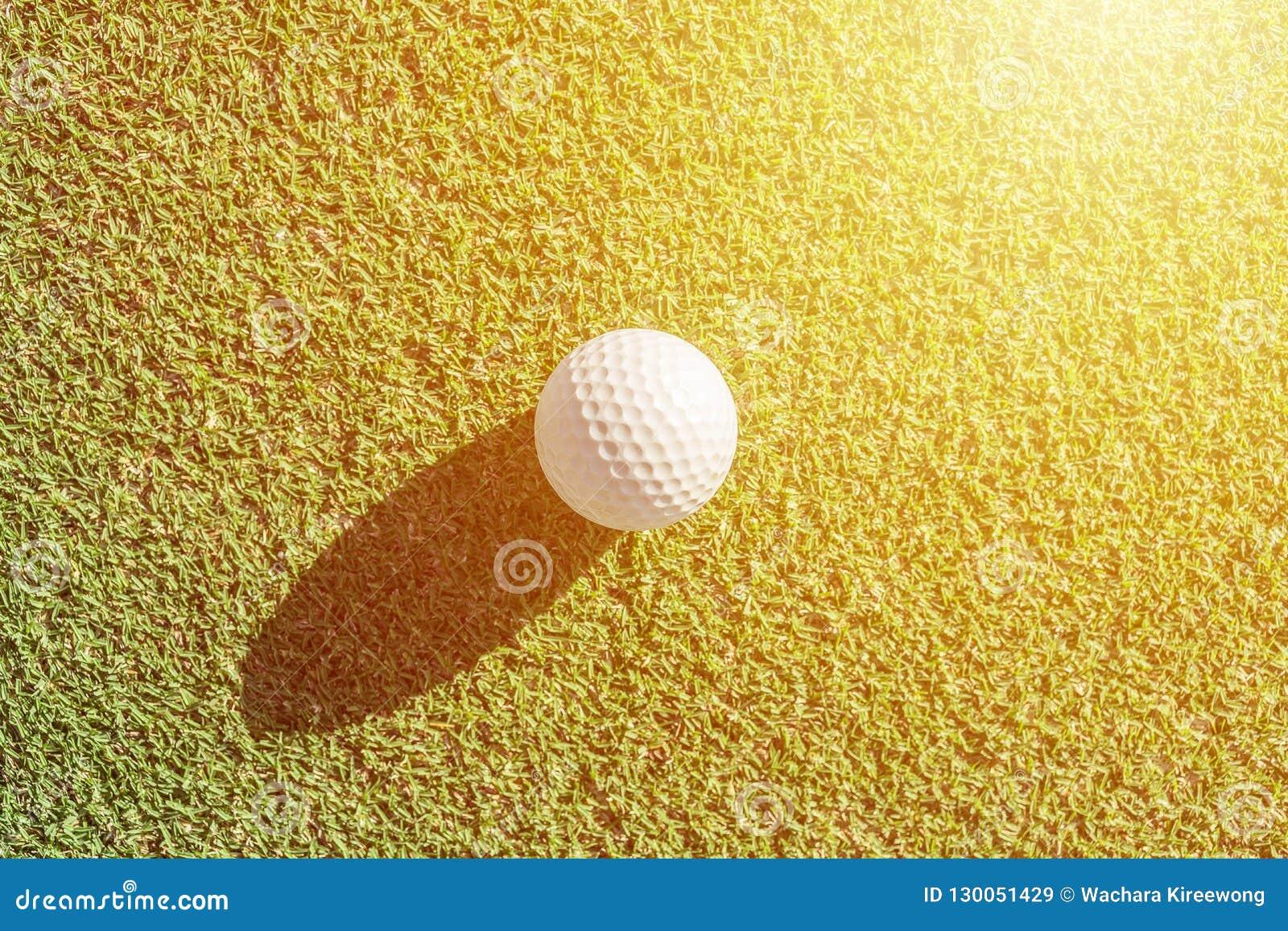 在绿草的白色高尔夫球与坚硬阴影 有益于backgr