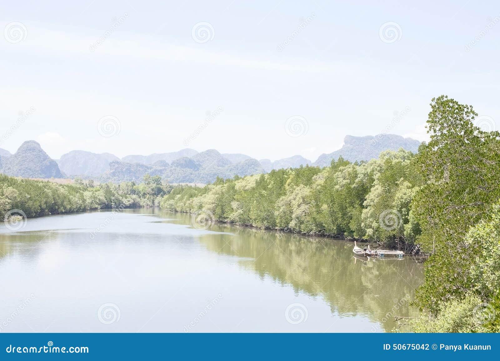 Download 在美洲红树运河停泊的Longtail小船 库存照片. 图片 包括有 美洲红树, 海运, 气候, 停泊, 浮动 - 50675042