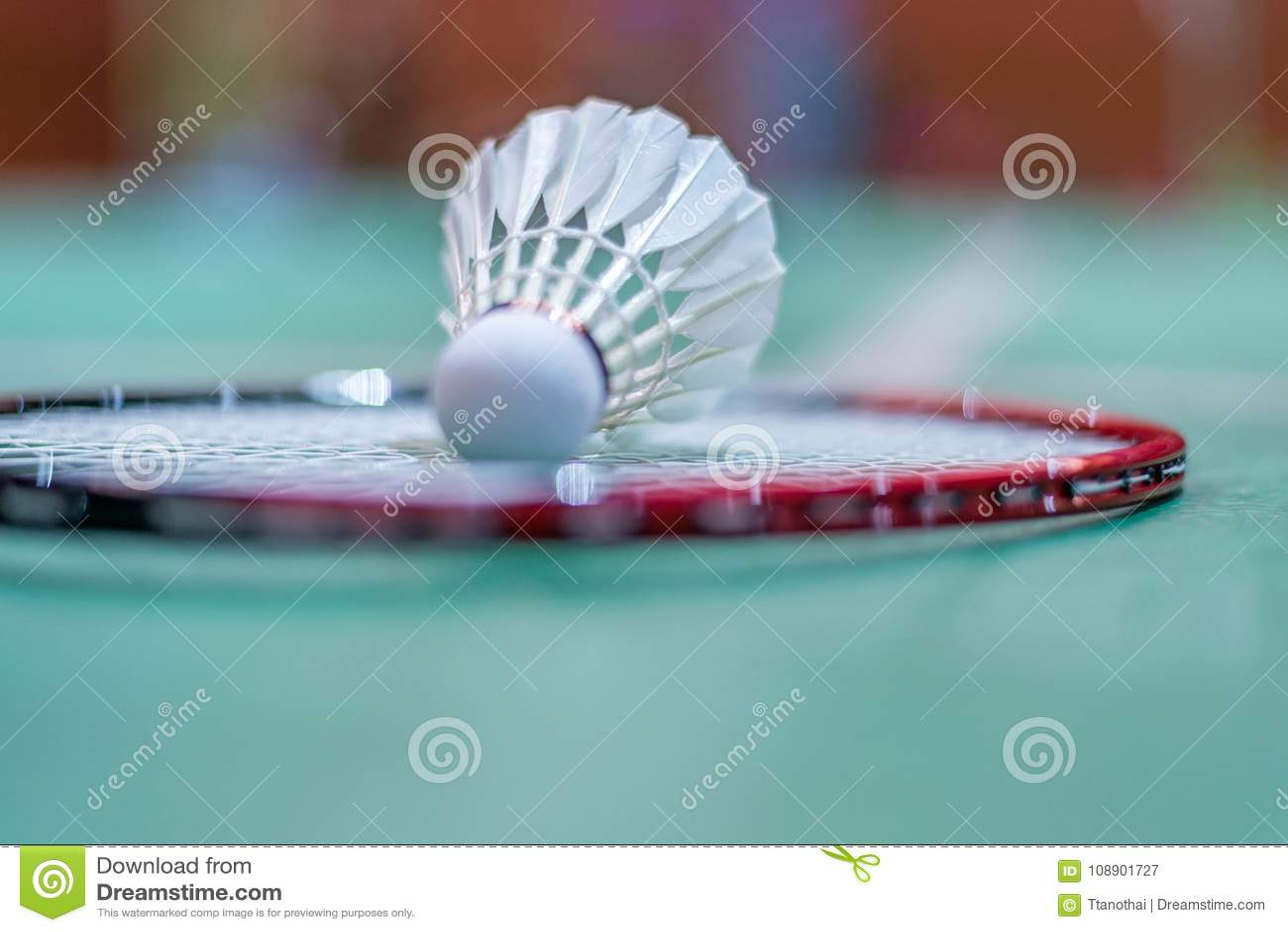在羽毛球拍的羽毛球shuttlecock在地板上