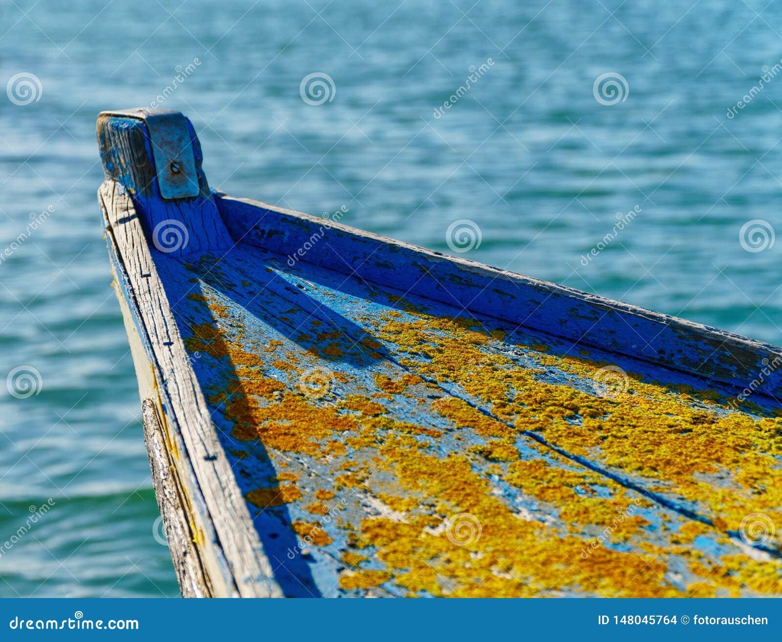 在老小船船身的特写镜头与金黄光亮的地衣