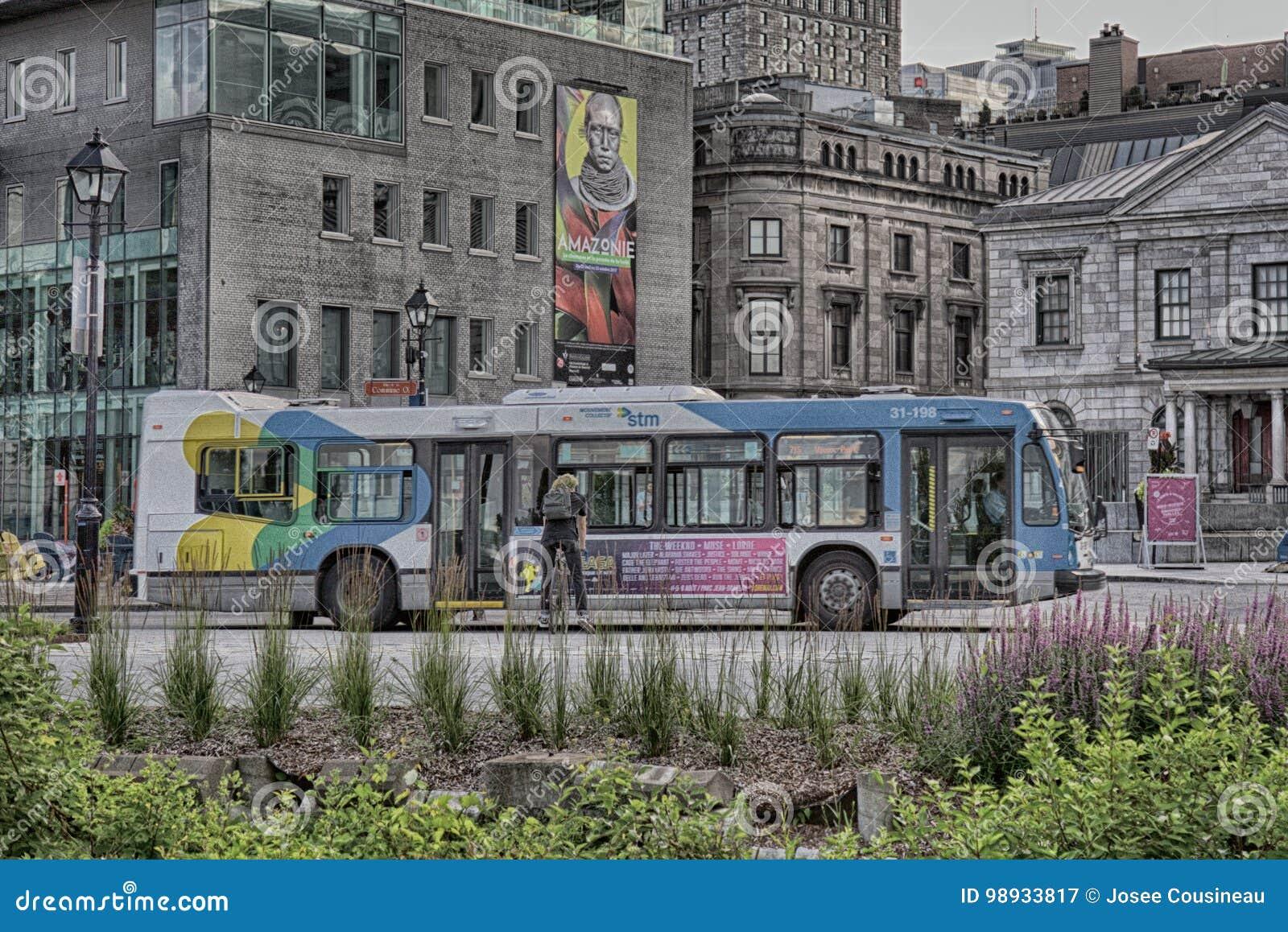 在老Monteal的公共汽车
