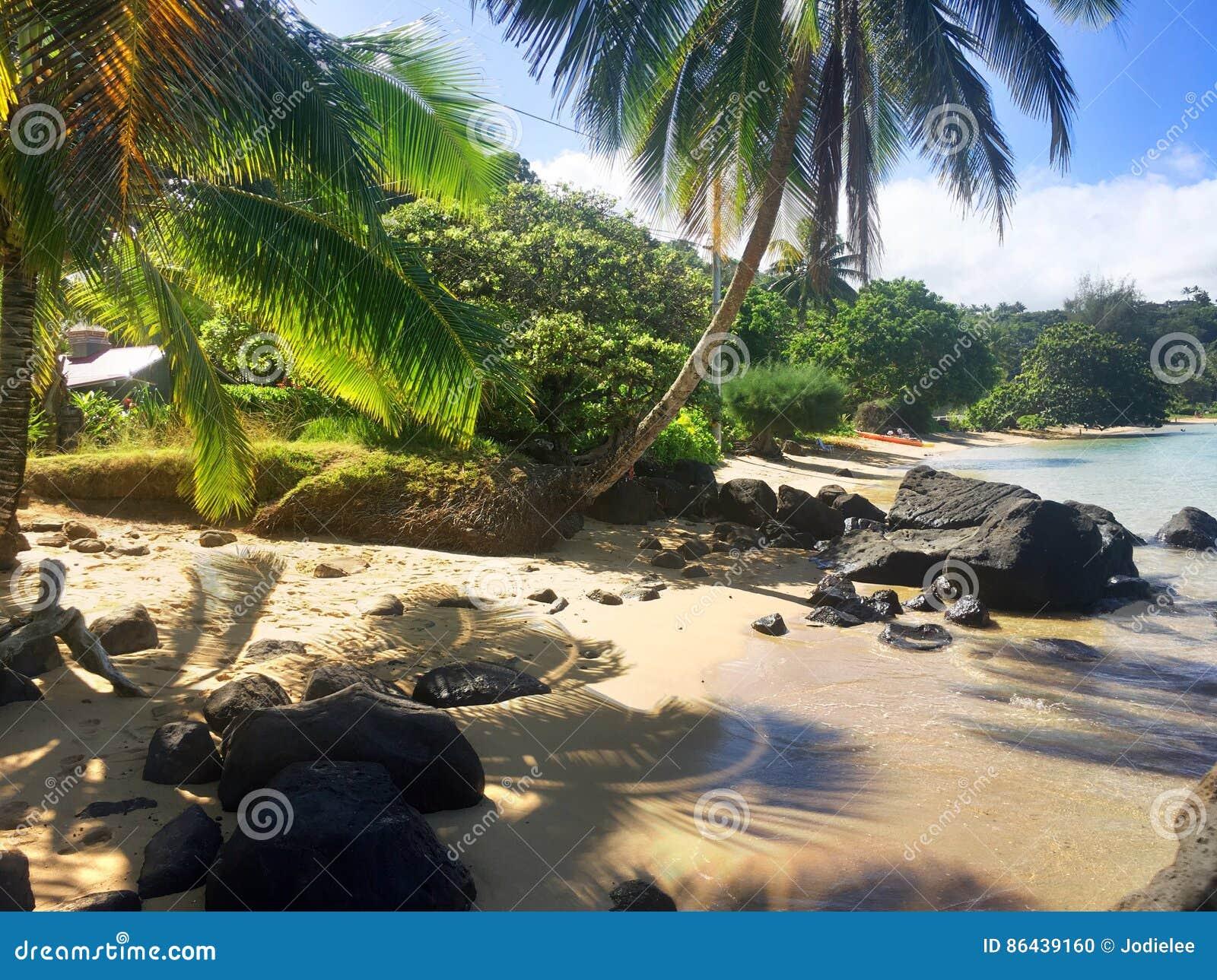 在考艾岛夏威夷海岛上的阿尼尼海滩