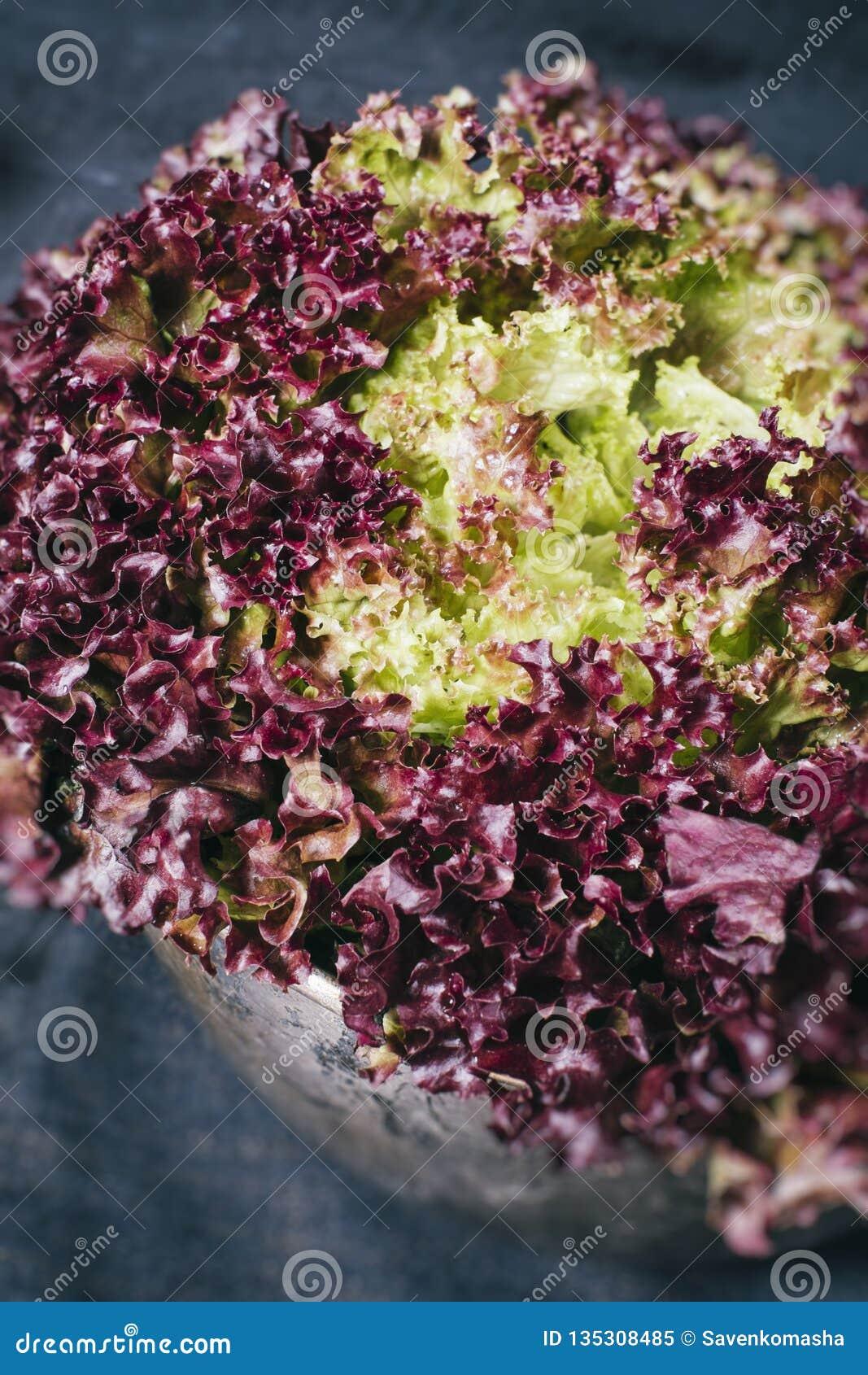 在背景的红色莴苣叶子在一件黑纺织品和金属片在年迈的木板葡萄酒vert的黑暗的背景