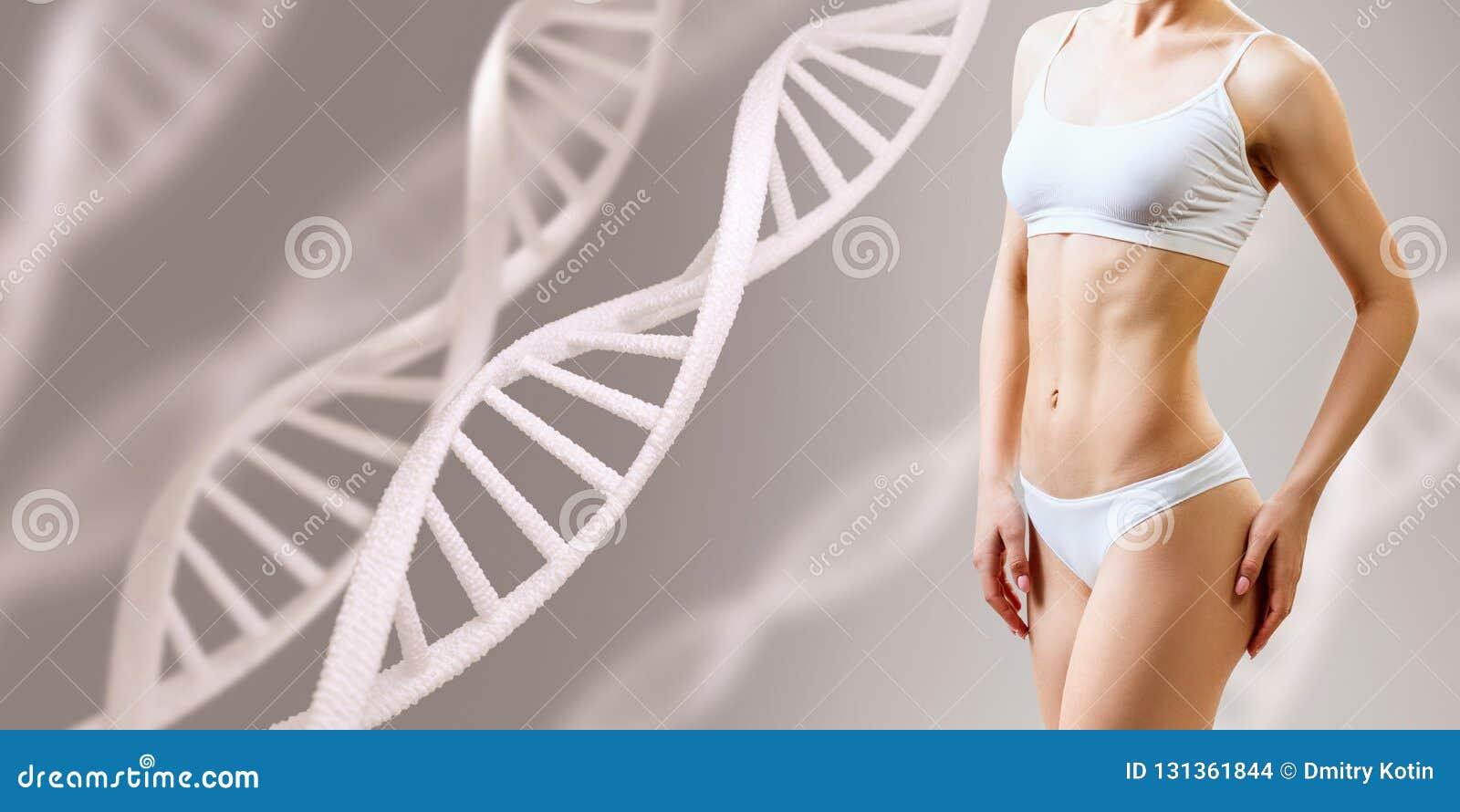 在脱氧核糖核酸词根附近的完善的运动的女性身体 好新陈代谢概念