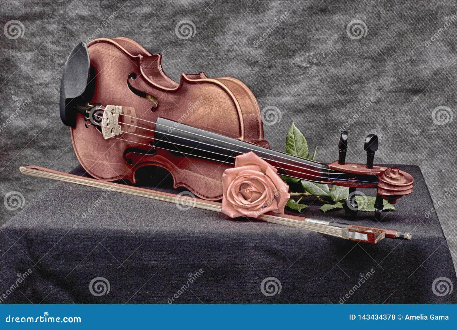 在艺术性的心情的小提琴