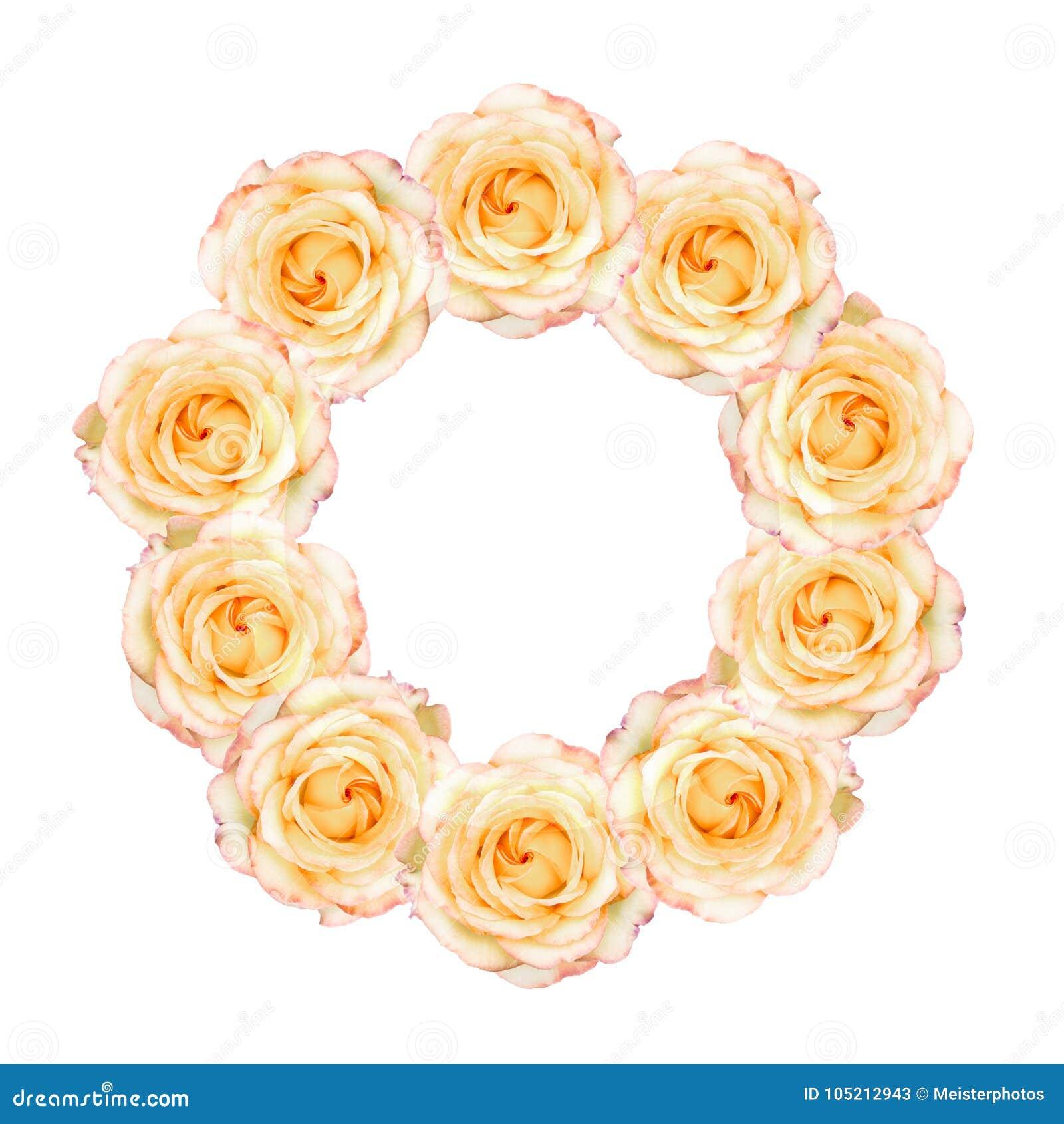 在花圈安排的淡色黄色玫瑰