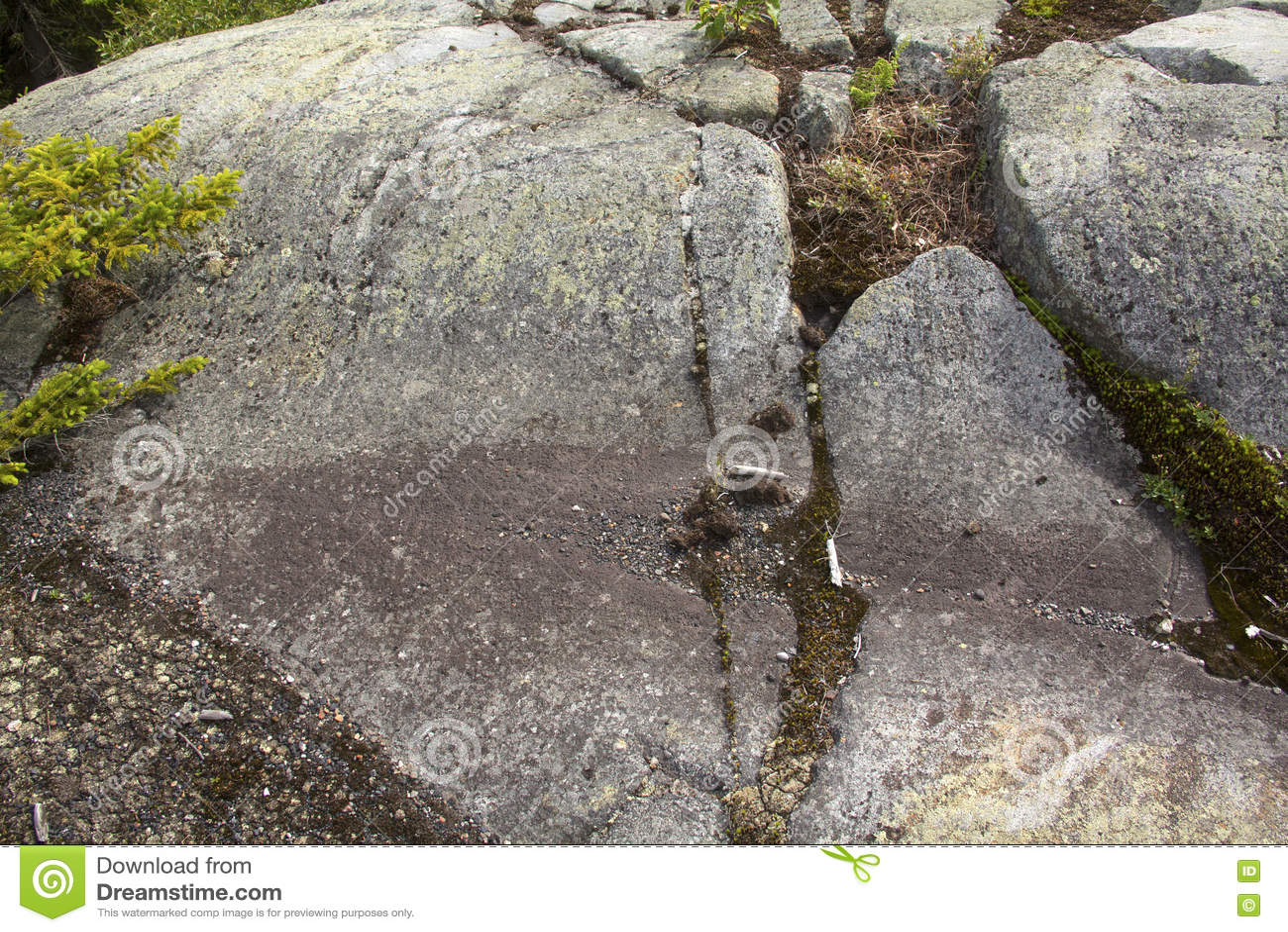在花岗岩根底, Mt的冰河凹线 Kearsarge,新罕布什尔
