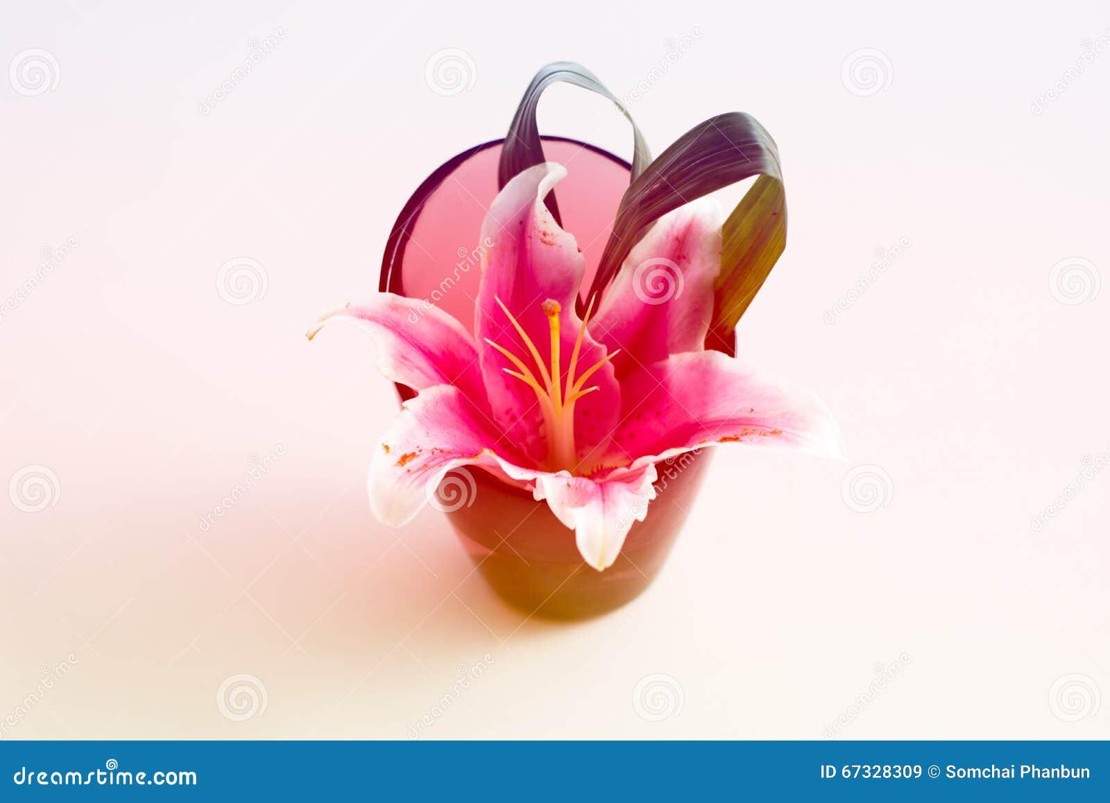 在花瓶的美丽的花与