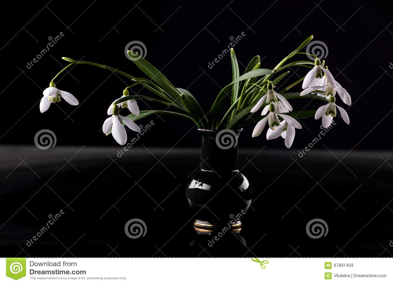 在花瓶的Snowdrops
