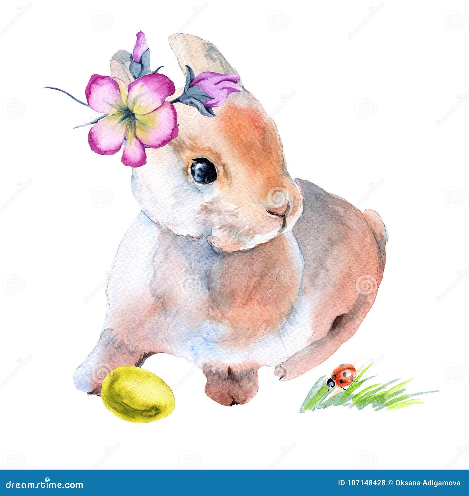 在花的复活节兔子用复活节彩蛋 查出在背景