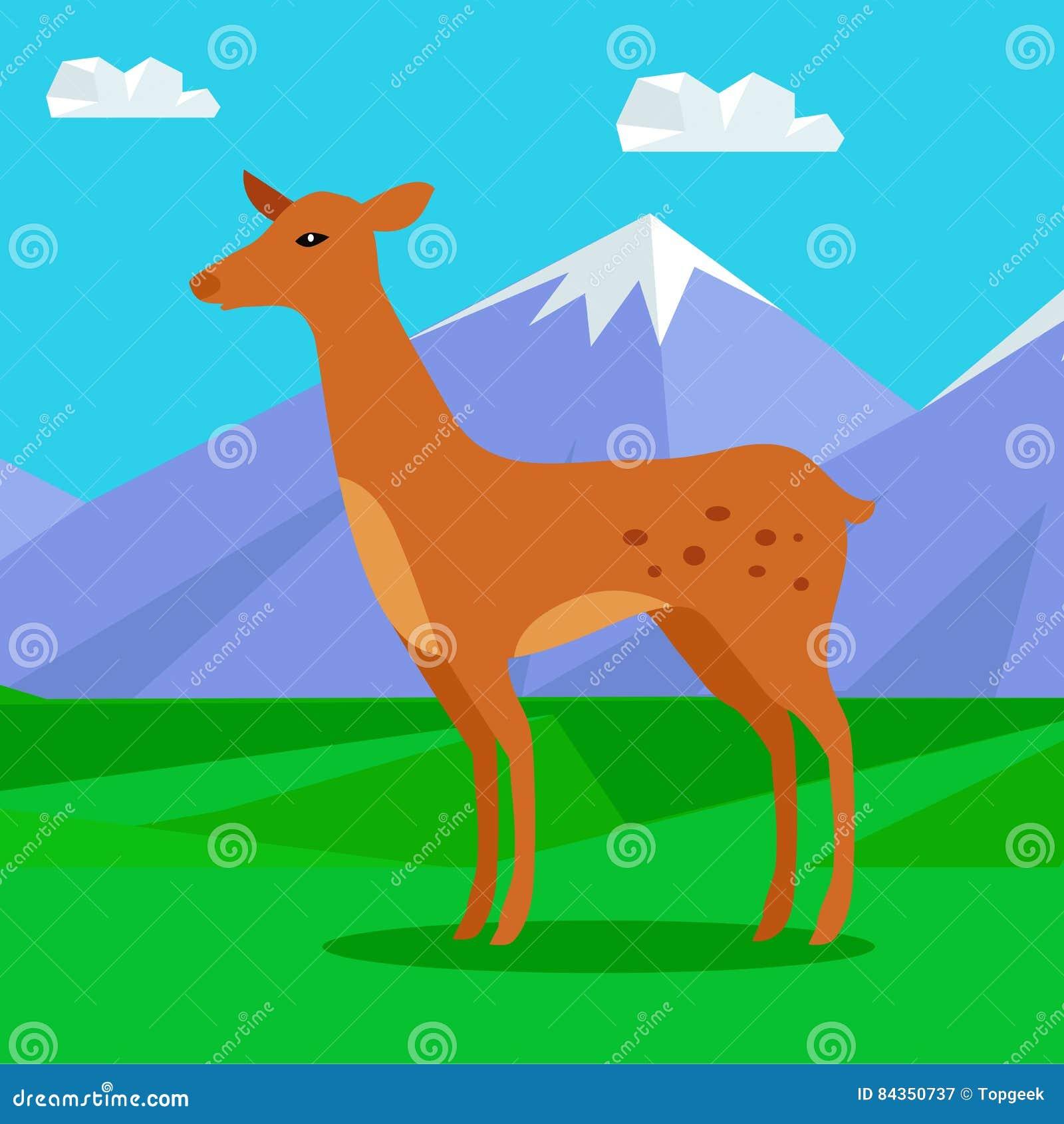 在草坪的小鹿山的 幼小鹿