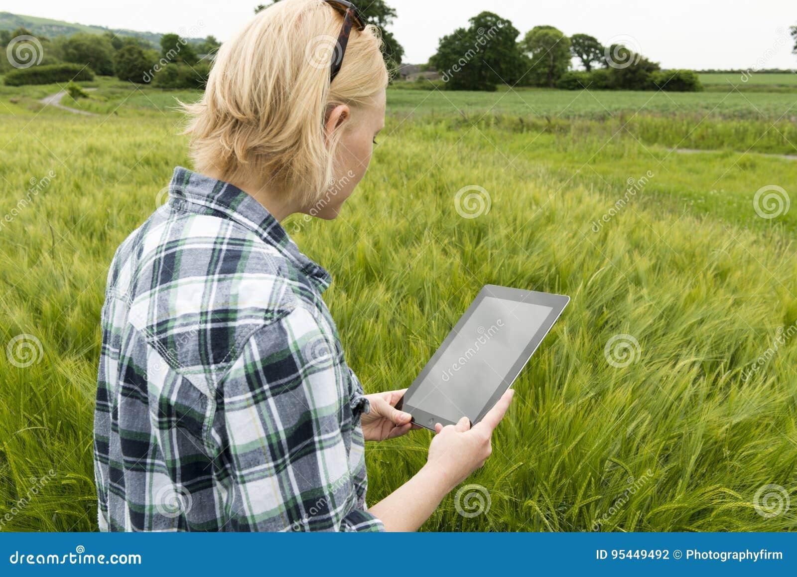 在草甸凝视片剂计算机黑屏的夫人