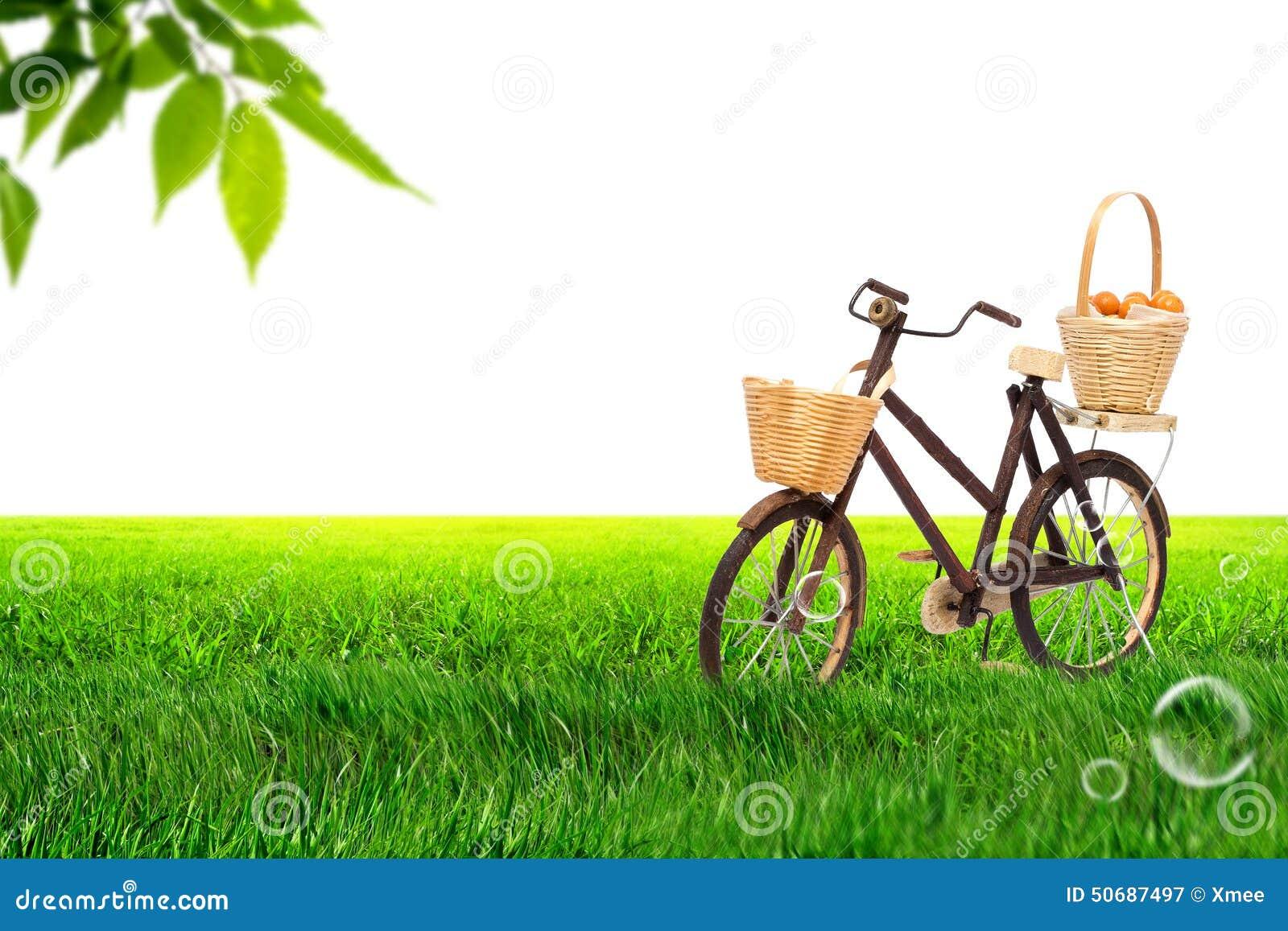 Download 在草甸的自行车 库存图片. 图片 包括有 自行车骑士, 立场, 背包, 艺术, 叶子, 蓝色, 果子, 对象 - 50687497
