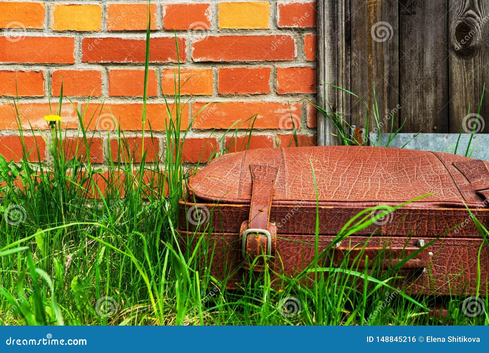 在草的老破旧的手提箱,对砖墙