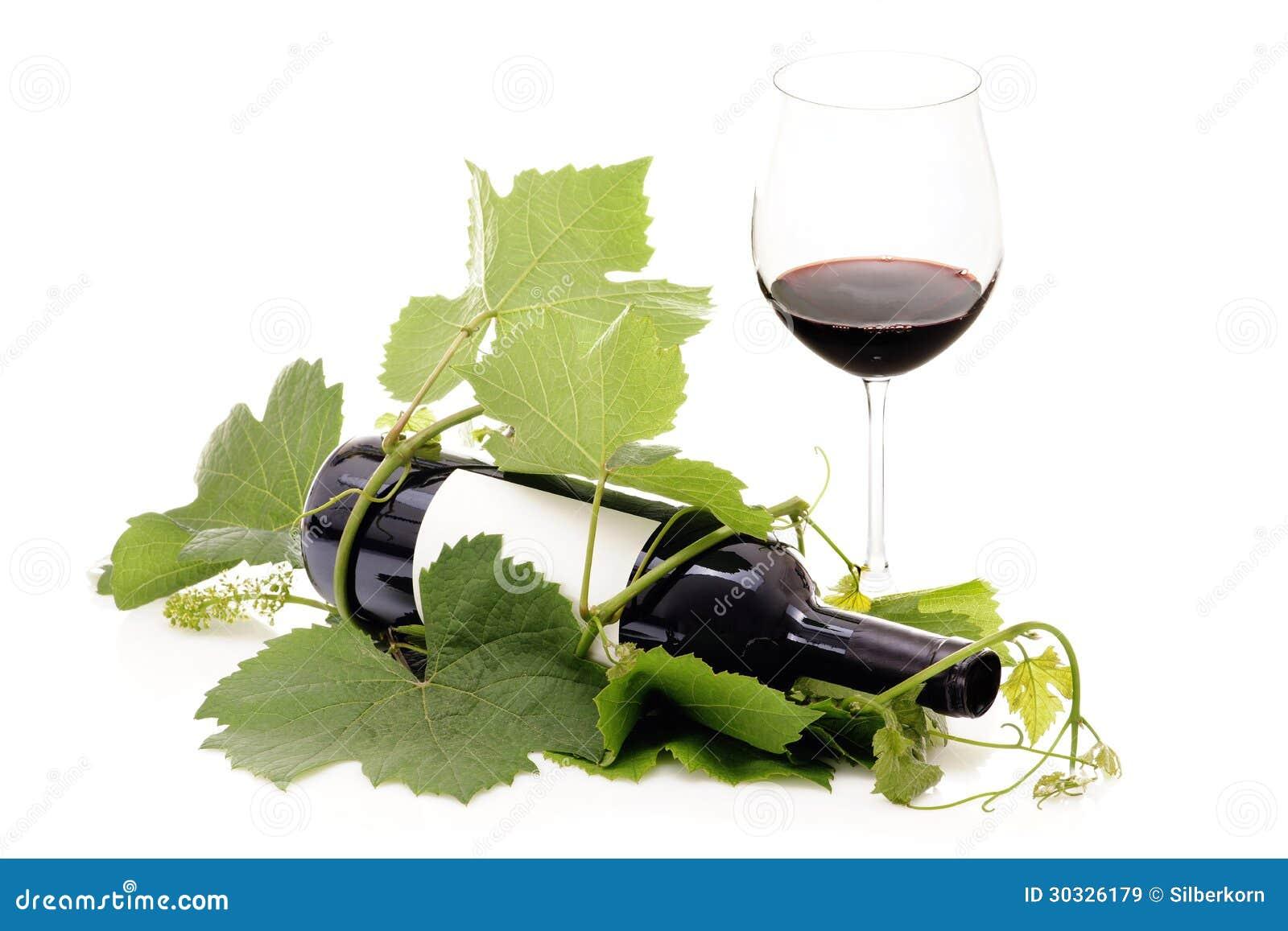 在葡萄树和玻璃包裹的红葡萄酒瓶