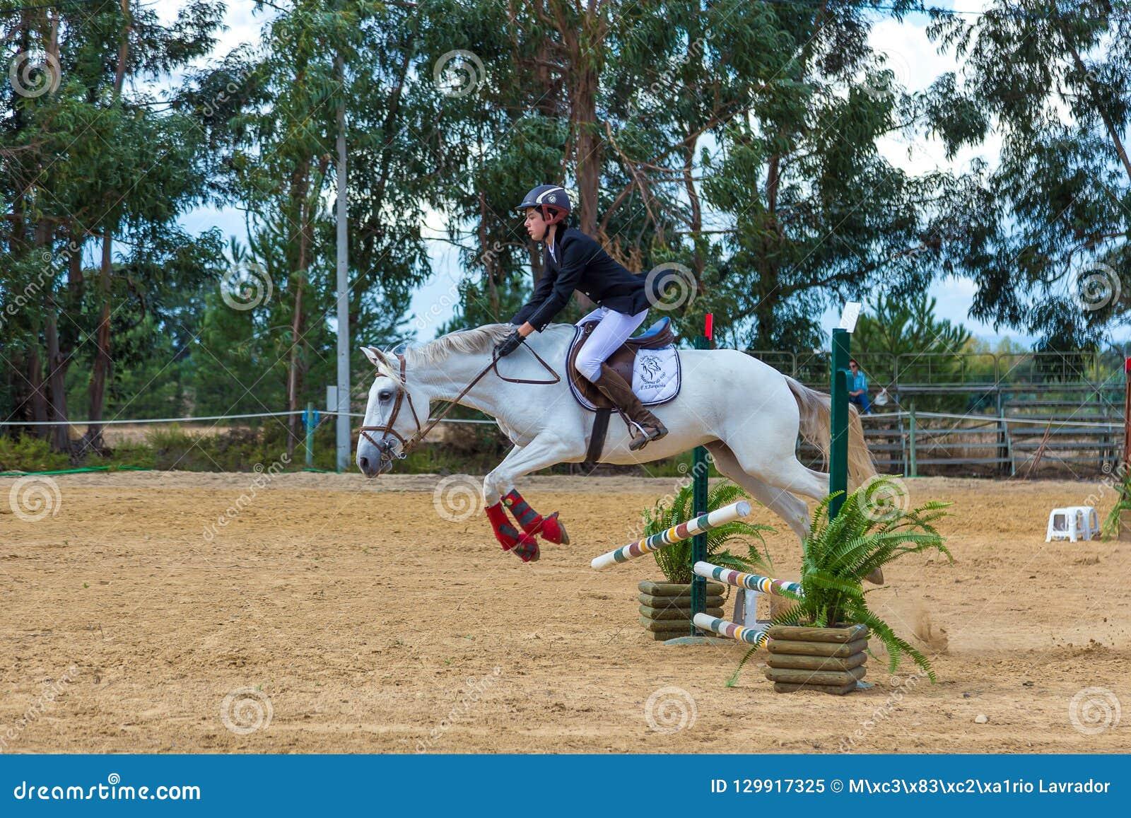 在葡萄牙自然马储备的马术