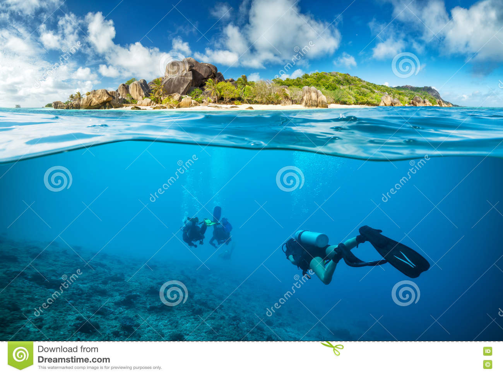 在表面下的潜水者在塞舌尔群岛
