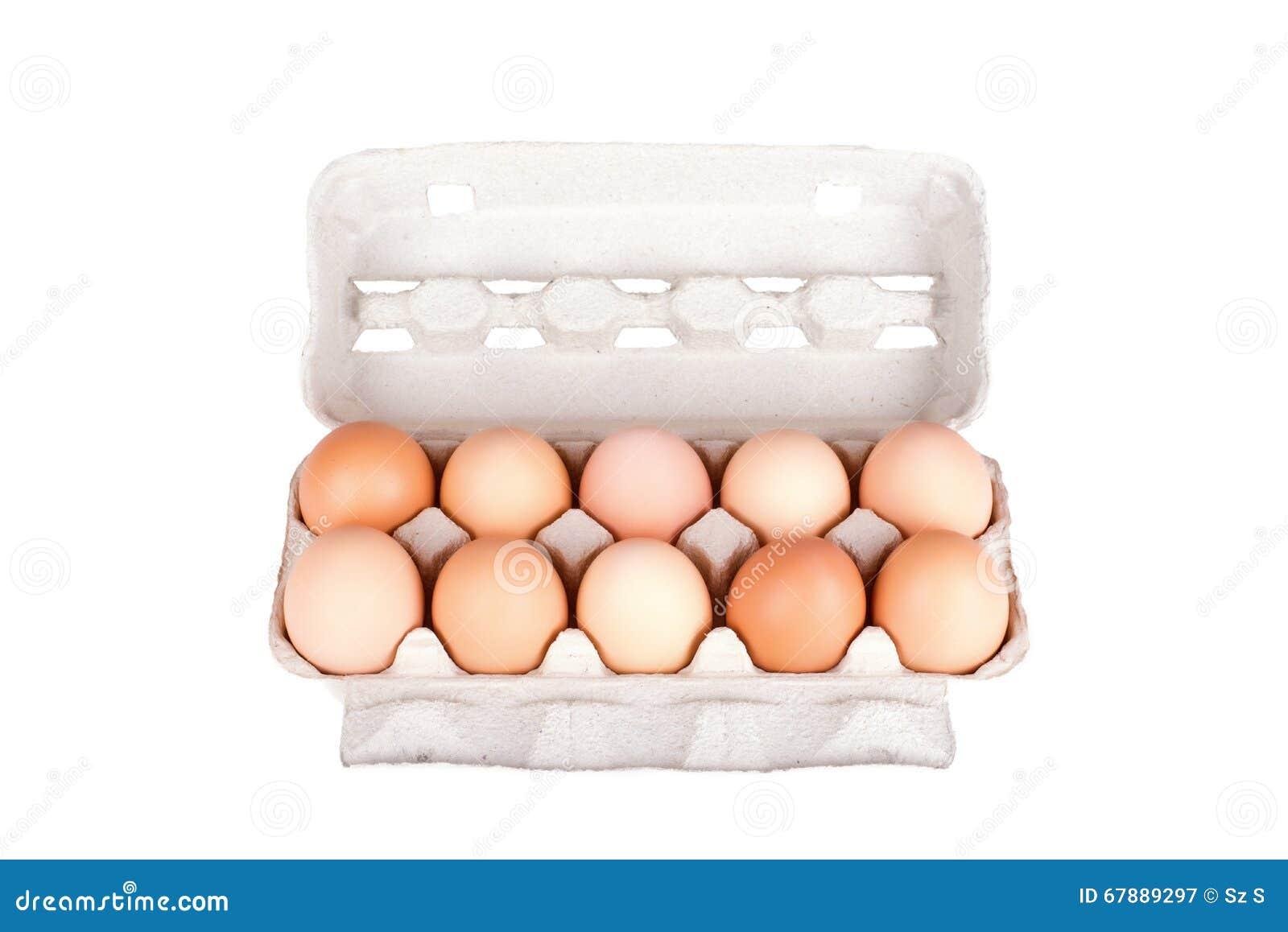 在被隔绝的纸盒包裹的十个鸡蛋