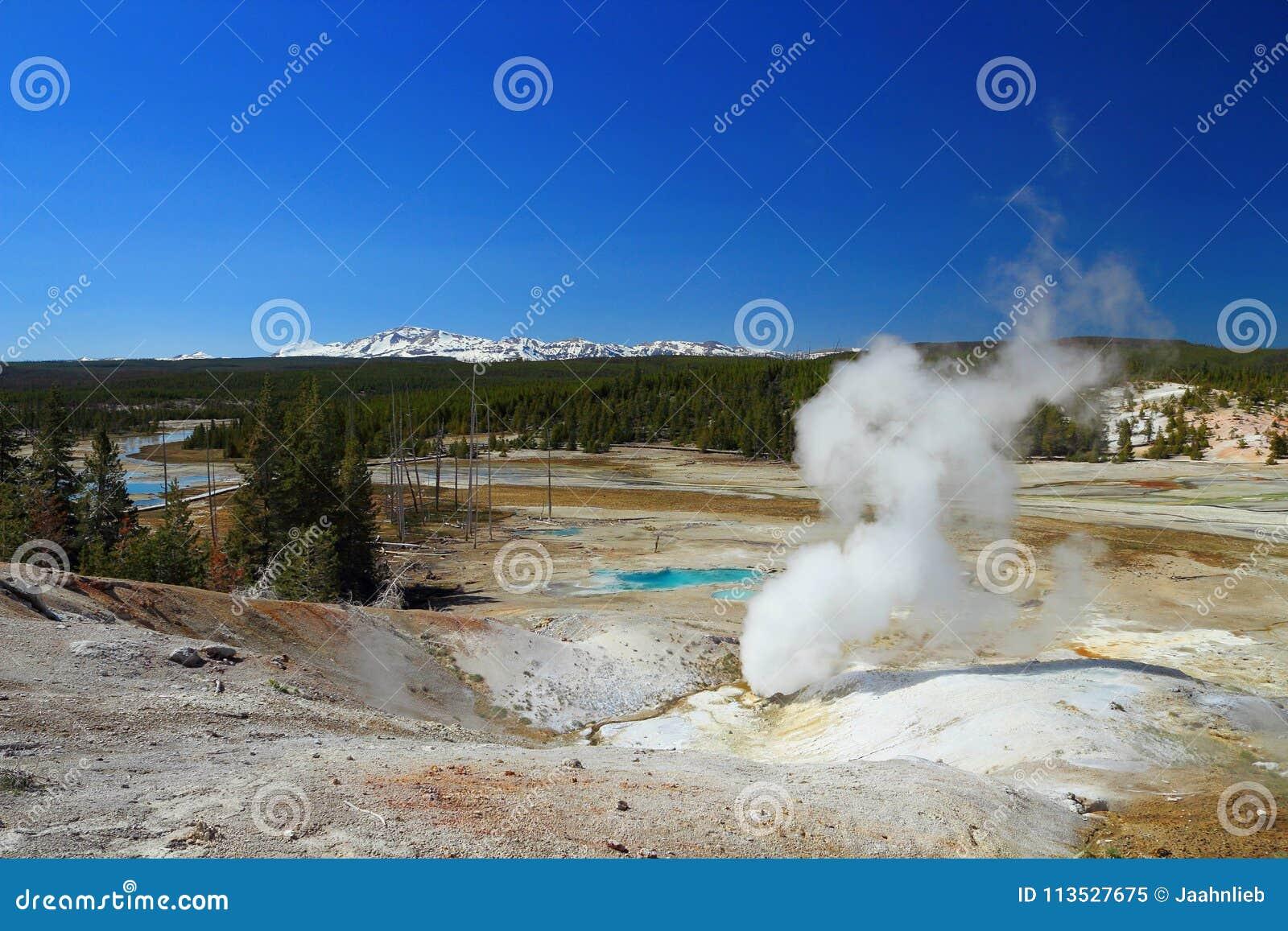 在诺哩斯喷泉水池,黄石国家公园,怀俄明的黑短路线圈测试仪出气孔