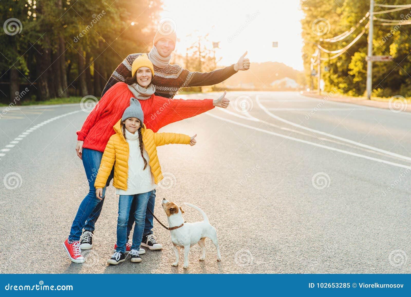 在路的无忧无虑的轻松的友好的家庭步行在有狗的,充满享受的培养拇指乡下,佩带温暖的嘘衣裳和体育