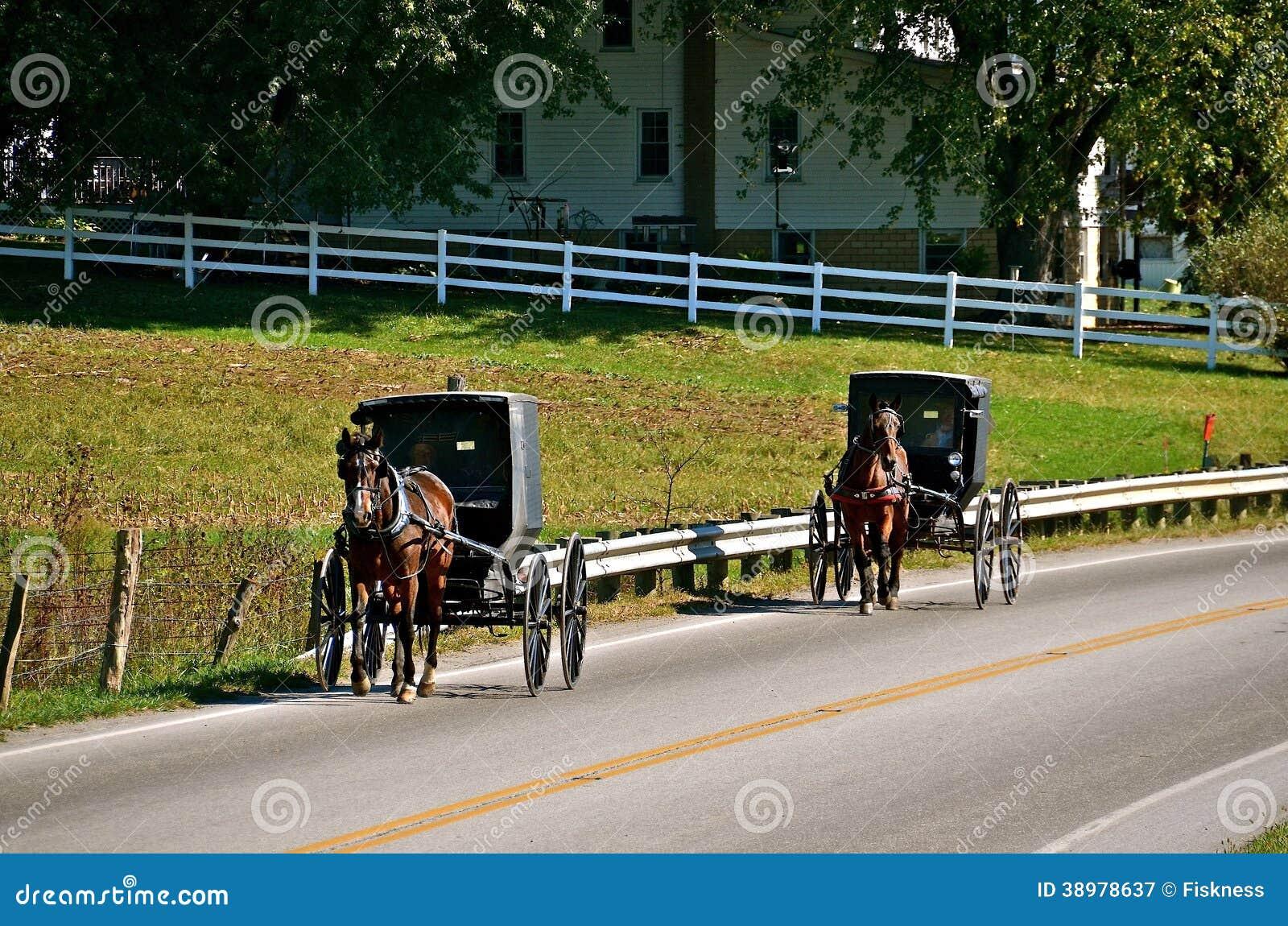 在路的门诺派中的严紧派的儿童车旅行