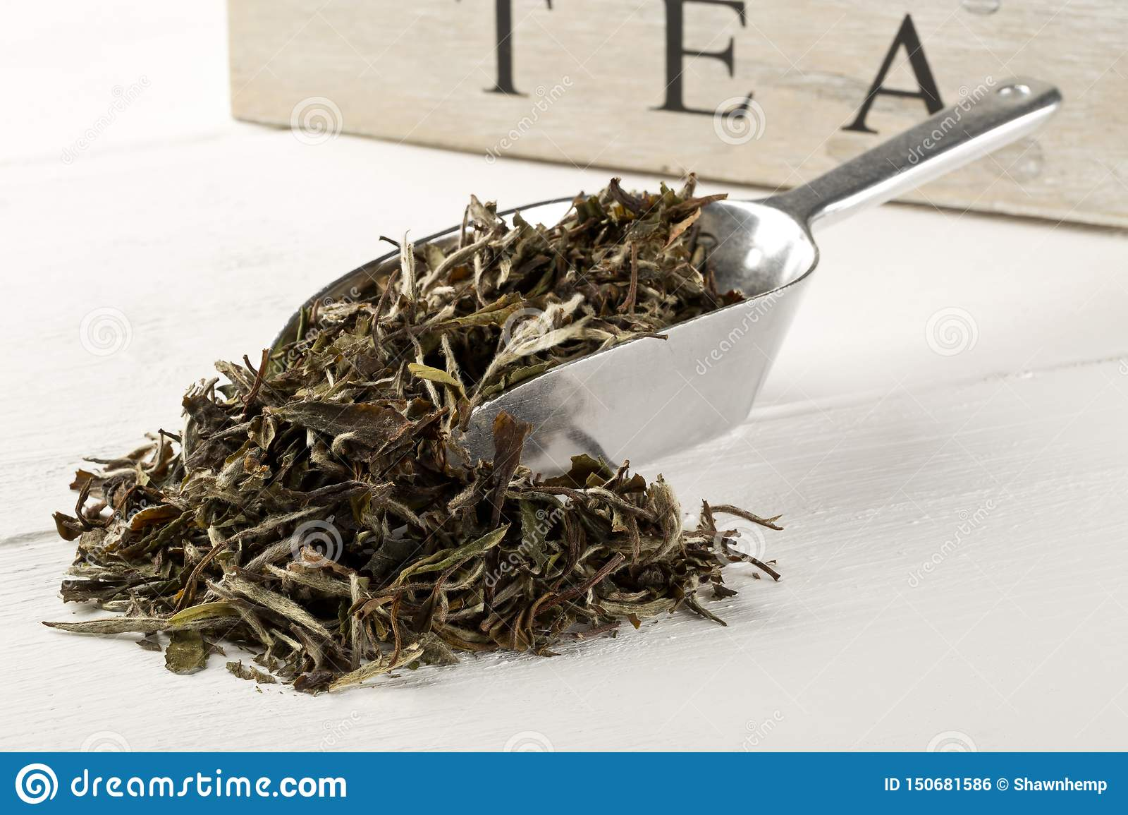 在金属瓢的干,未加工的白色茶叶在白色木桌背景