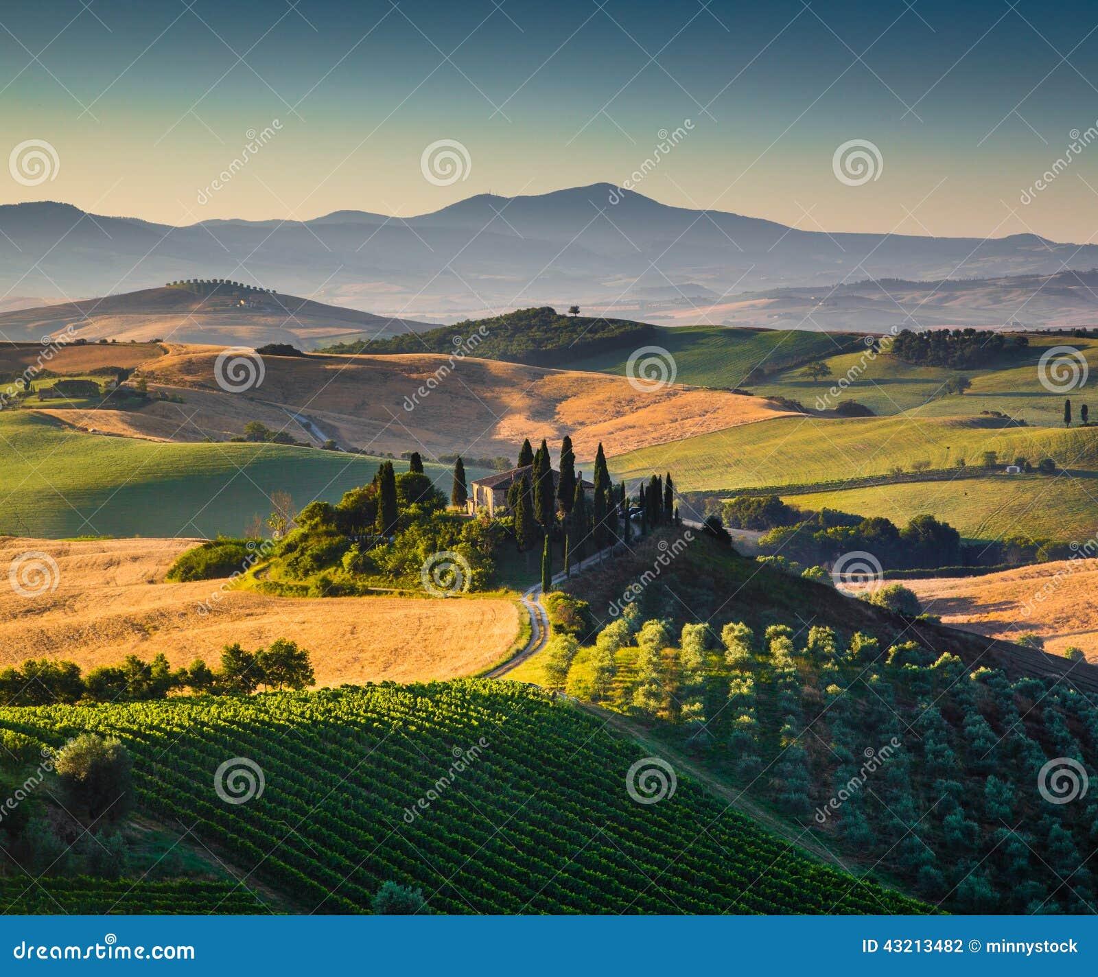 在金黄早晨光的风景托斯卡纳风景