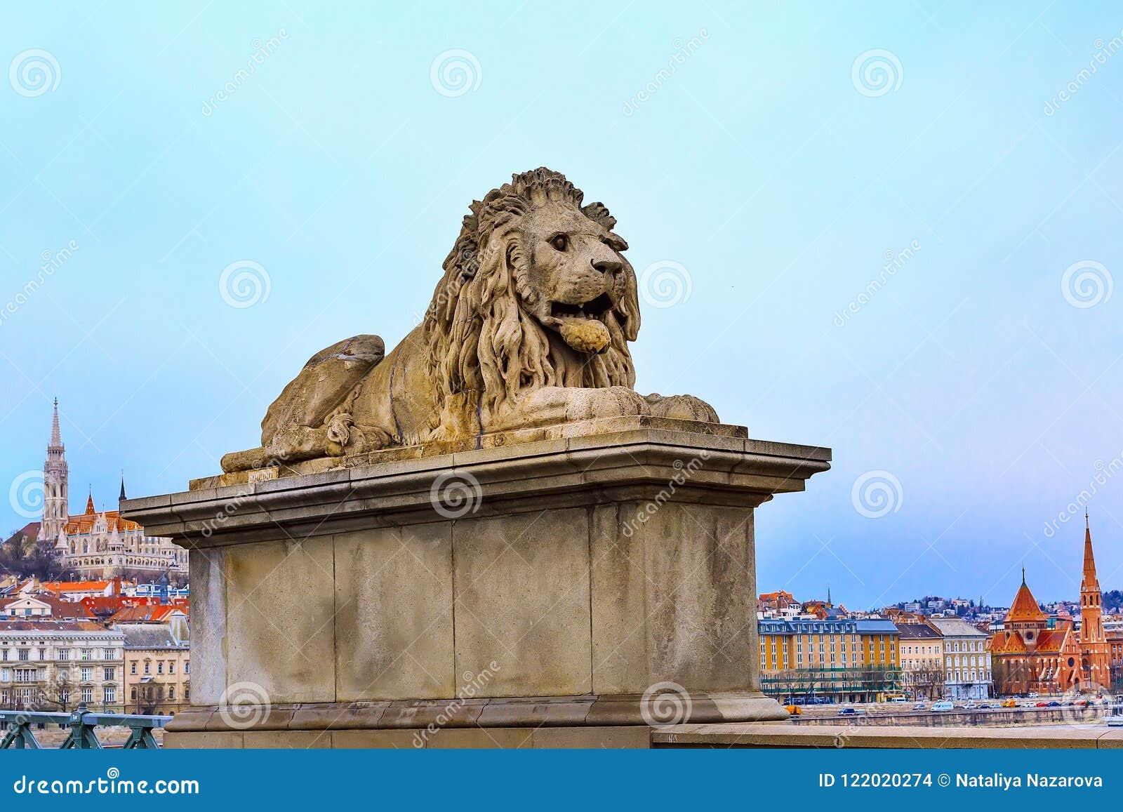 在铁锁式桥梁的狮子雕象,布达佩斯,匈牙利图片