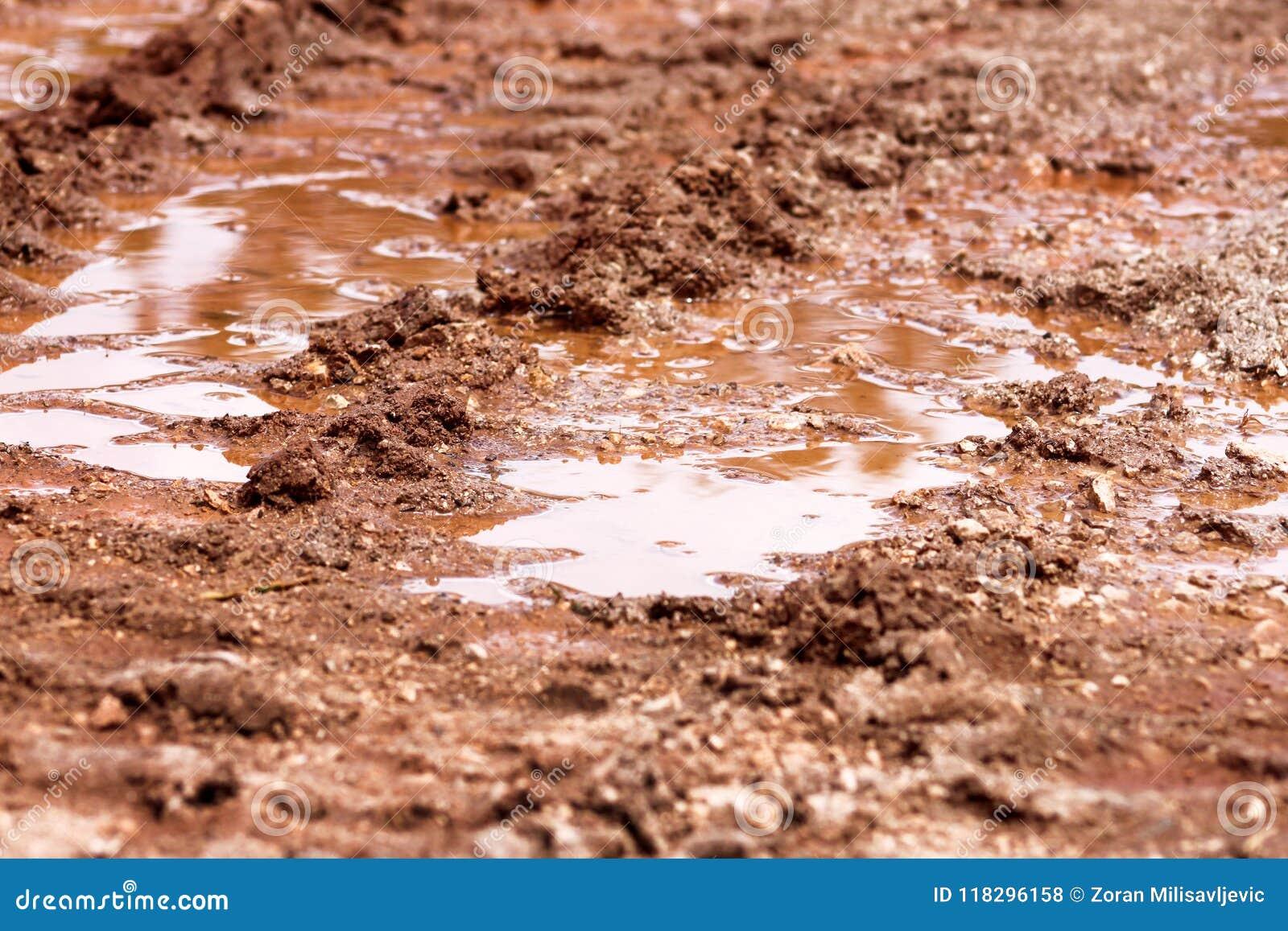 在雨以后转动在路、水坑和泥的踪影 在拖拉机,挖掘机,汽车,在泥泞的足迹的汽车轮胎轨道土壤的踪影