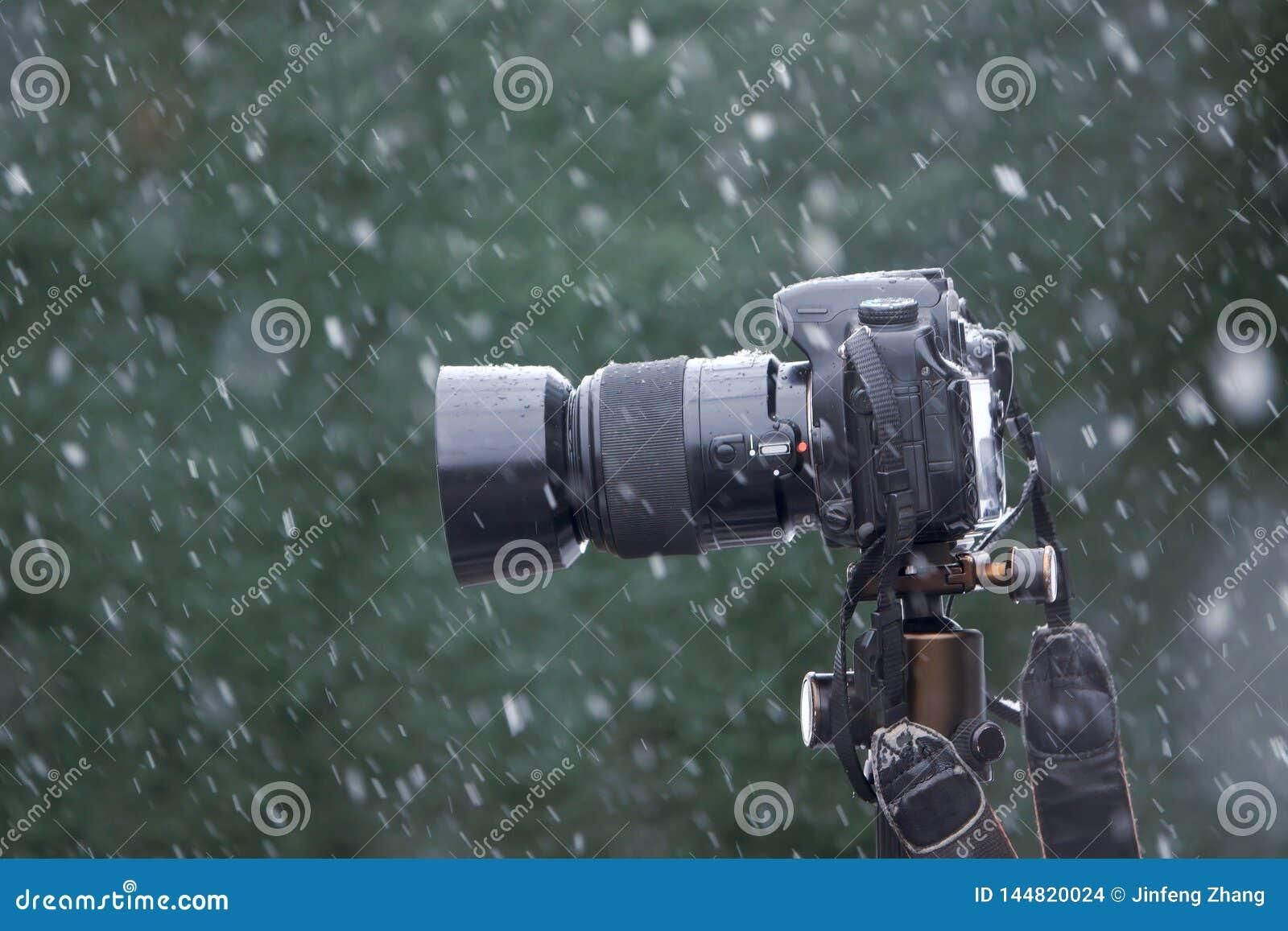 在雪的DSLR