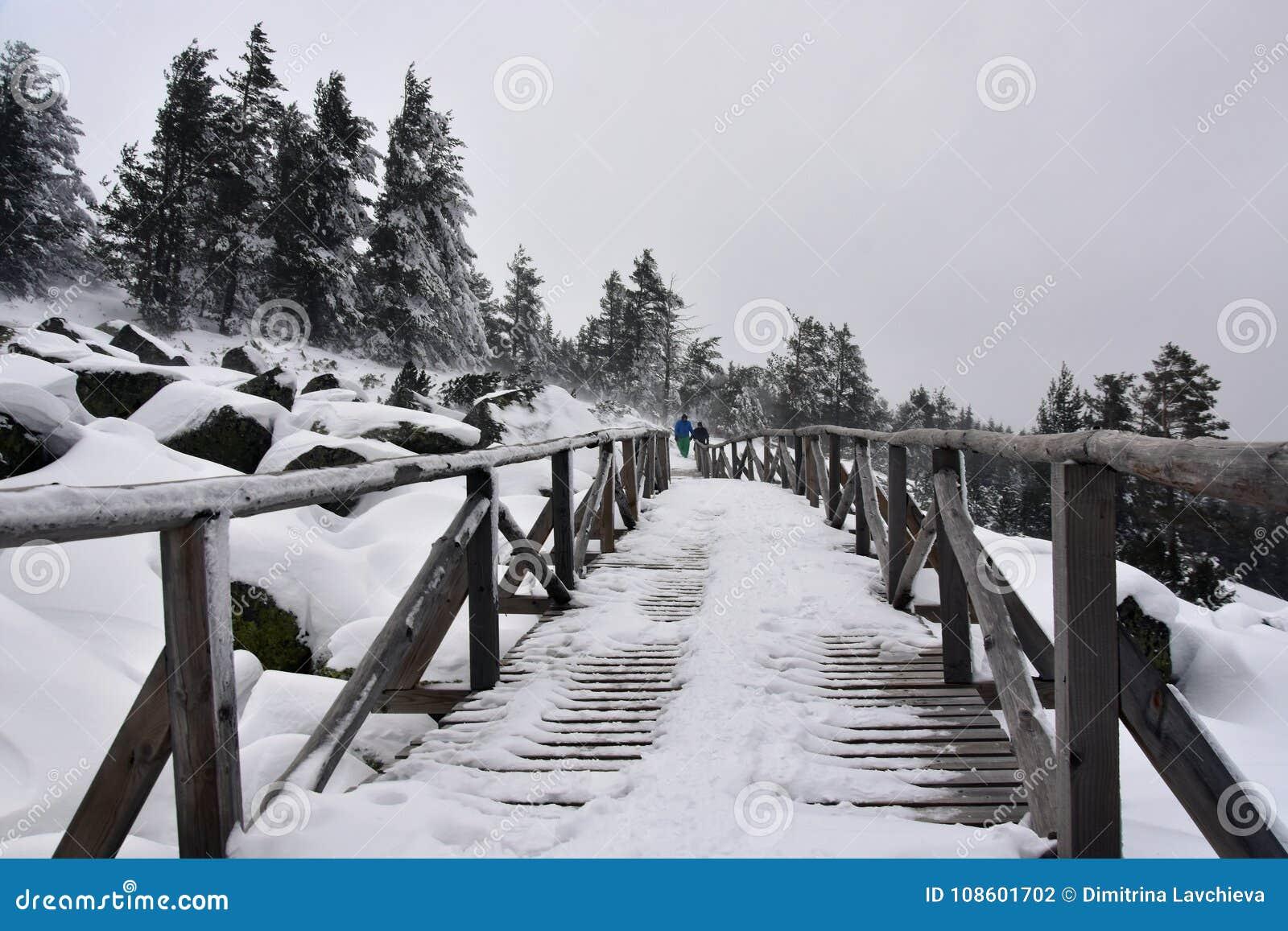 在雪, Vitosha山,保加利亚的木人行桥