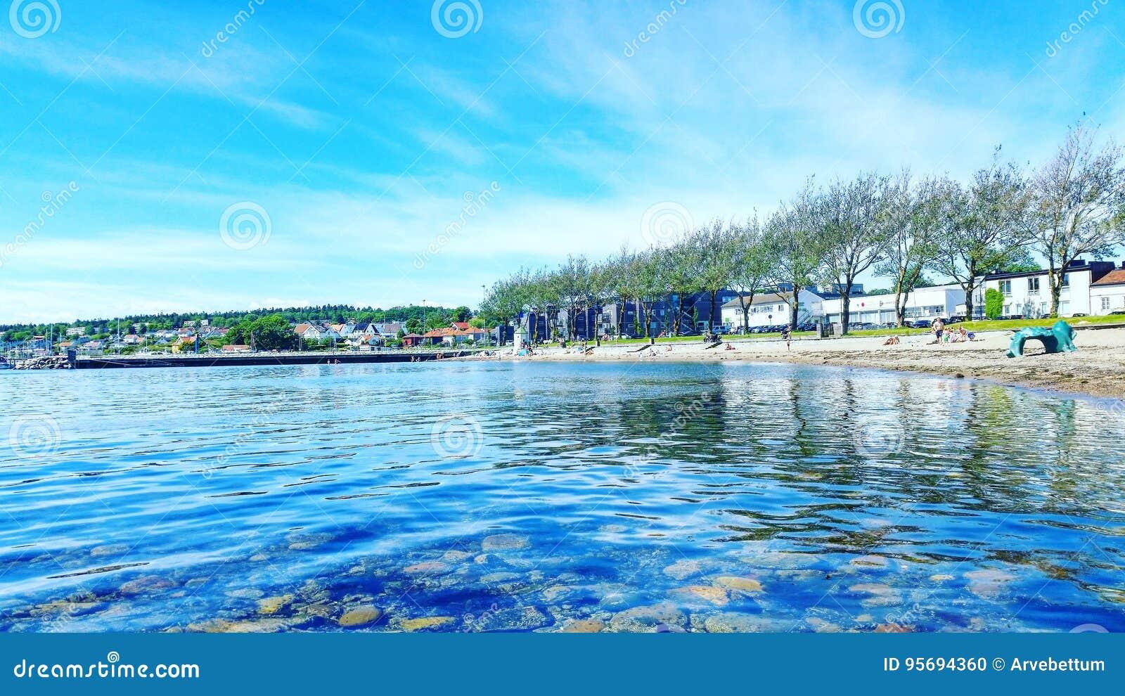 在青苔挪威的沿海