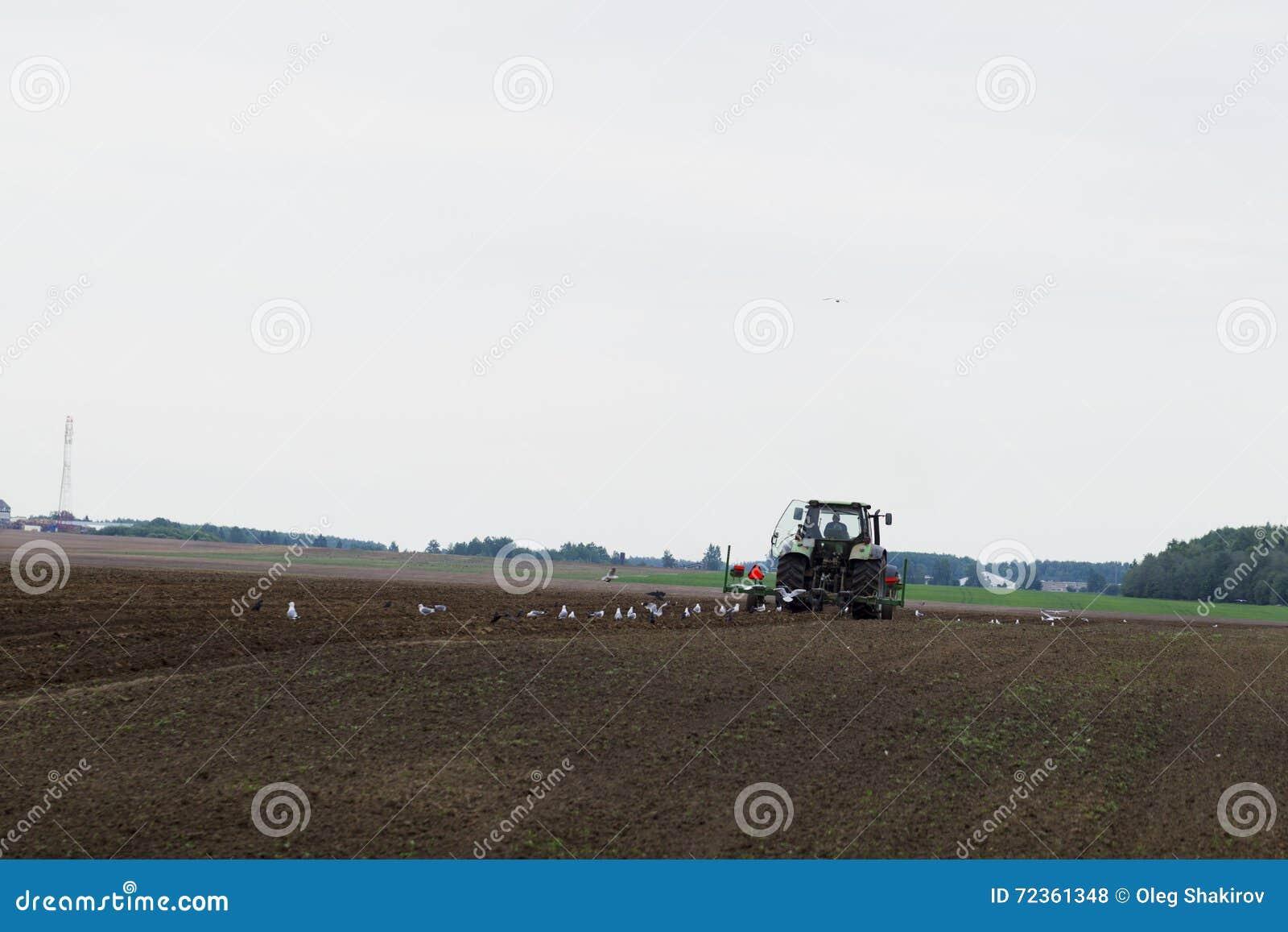 在领域的拖拉机在农业操作