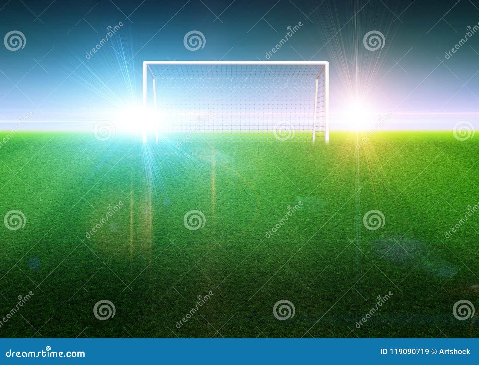 在领域的足球目标