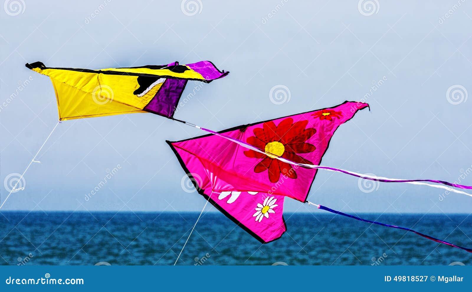 在飞行中风筝