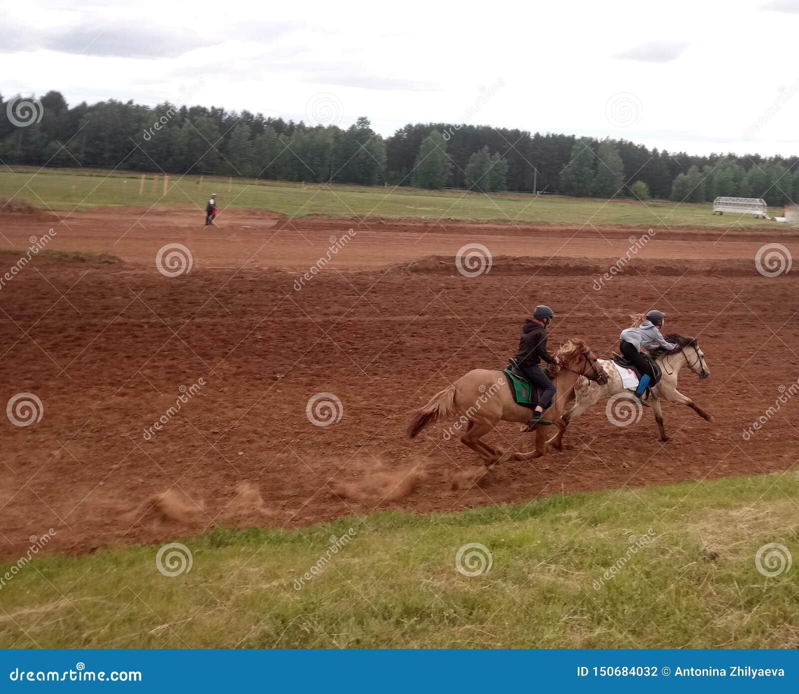 在马背上赛跑两个车手