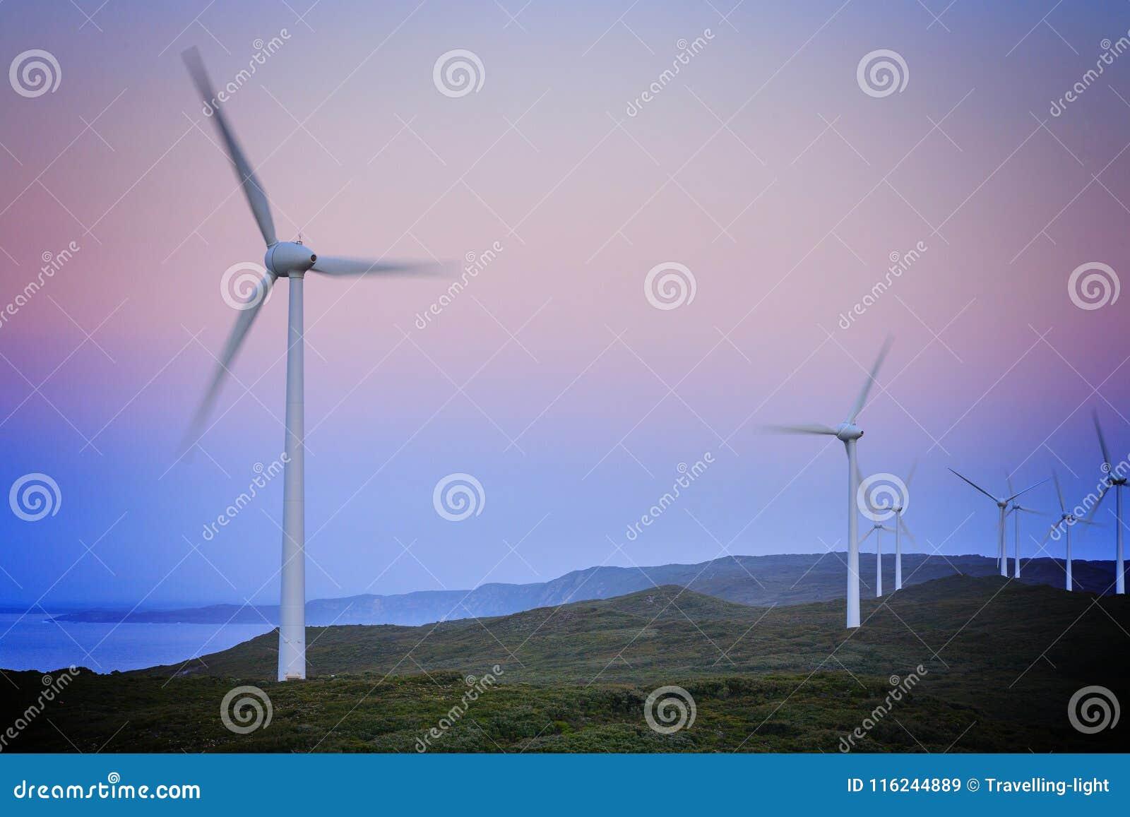 在黎明前的风轮机,阿尔巴尼风Farn,西澳州