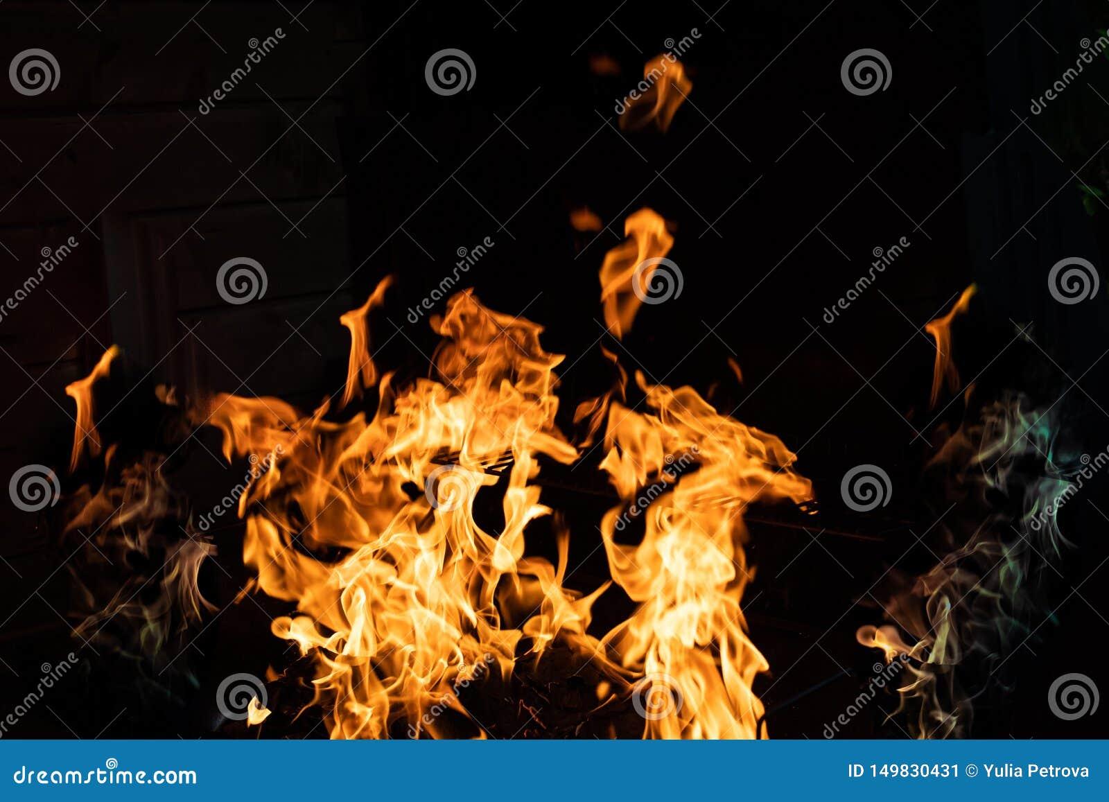 在黑背景的柴火 火火焰在黑背景的 在黑暗的火愤怒 篝火在晚上 火焰是
