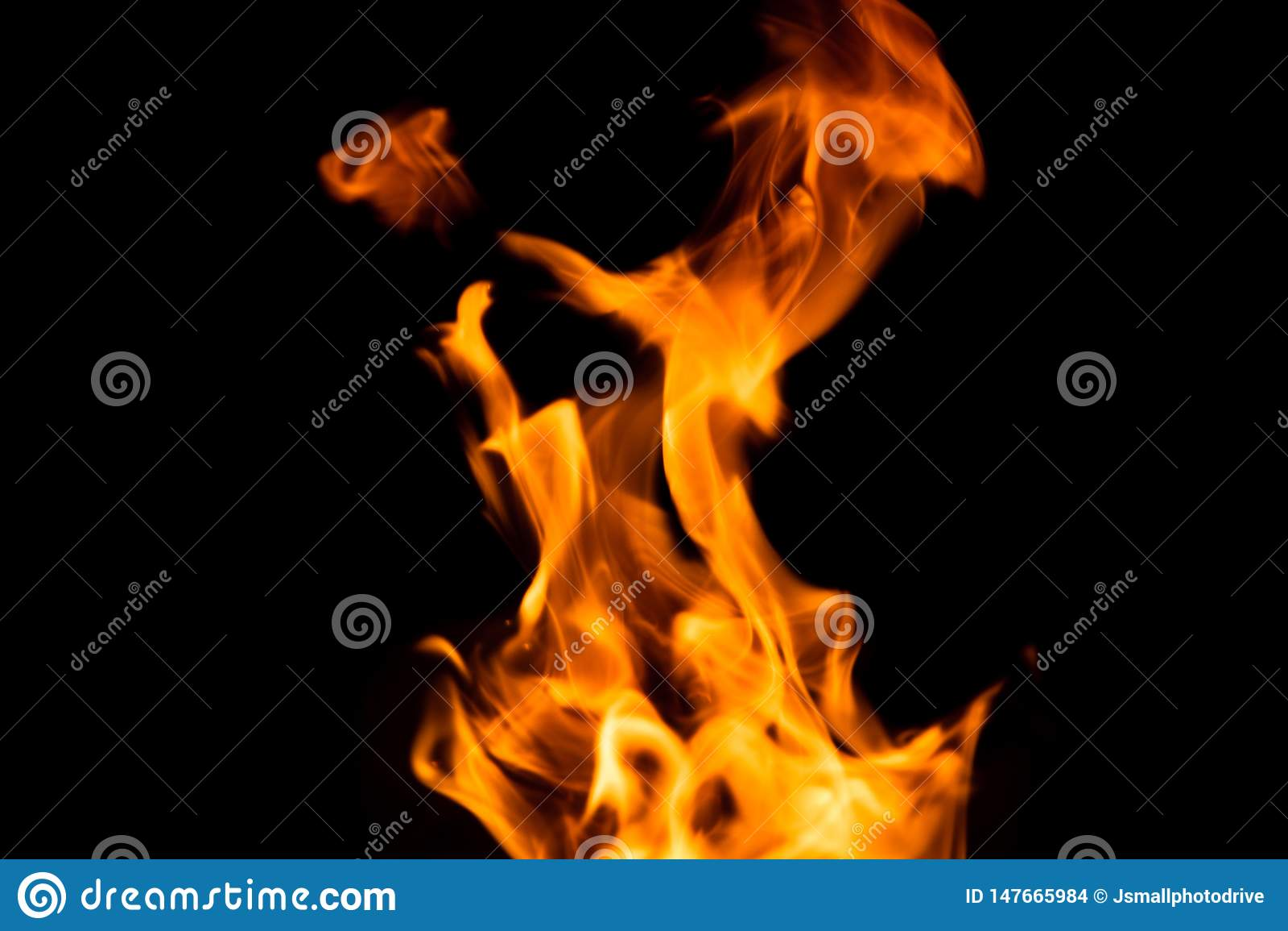 在黑背景隔绝的火火焰